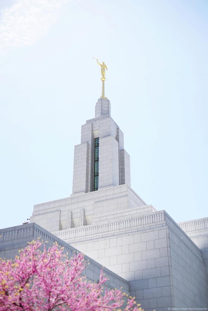 Draper_Temple_Wedding_Marleys_Reception_Utah_Wedding_Photographer_0066.jpg
