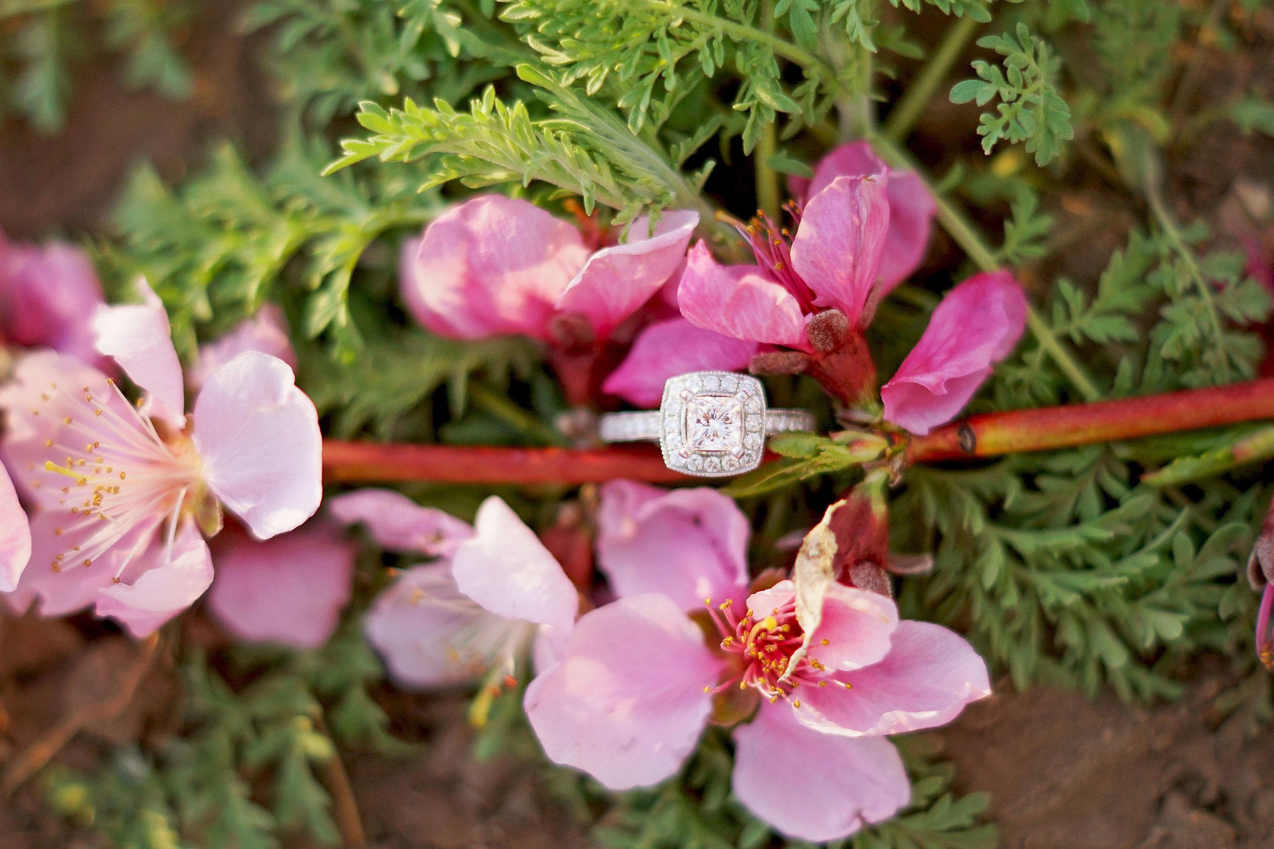 Utah_Wedding_Photographer_12.jpg