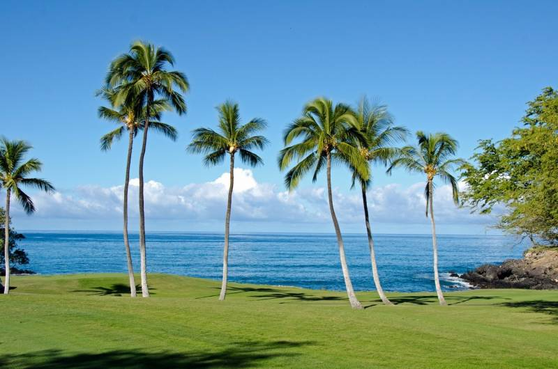 An oceanfront golf fairway with swaying palms and blue skies at the Mauna Kea Resort course.