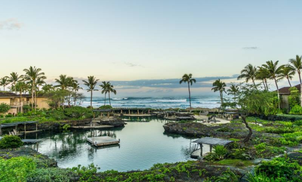2019-01-30 10_22_49-Farm-to-Table Dining_ The Kohala Coast is a Foodie Destination - Hawaii Real Est.png