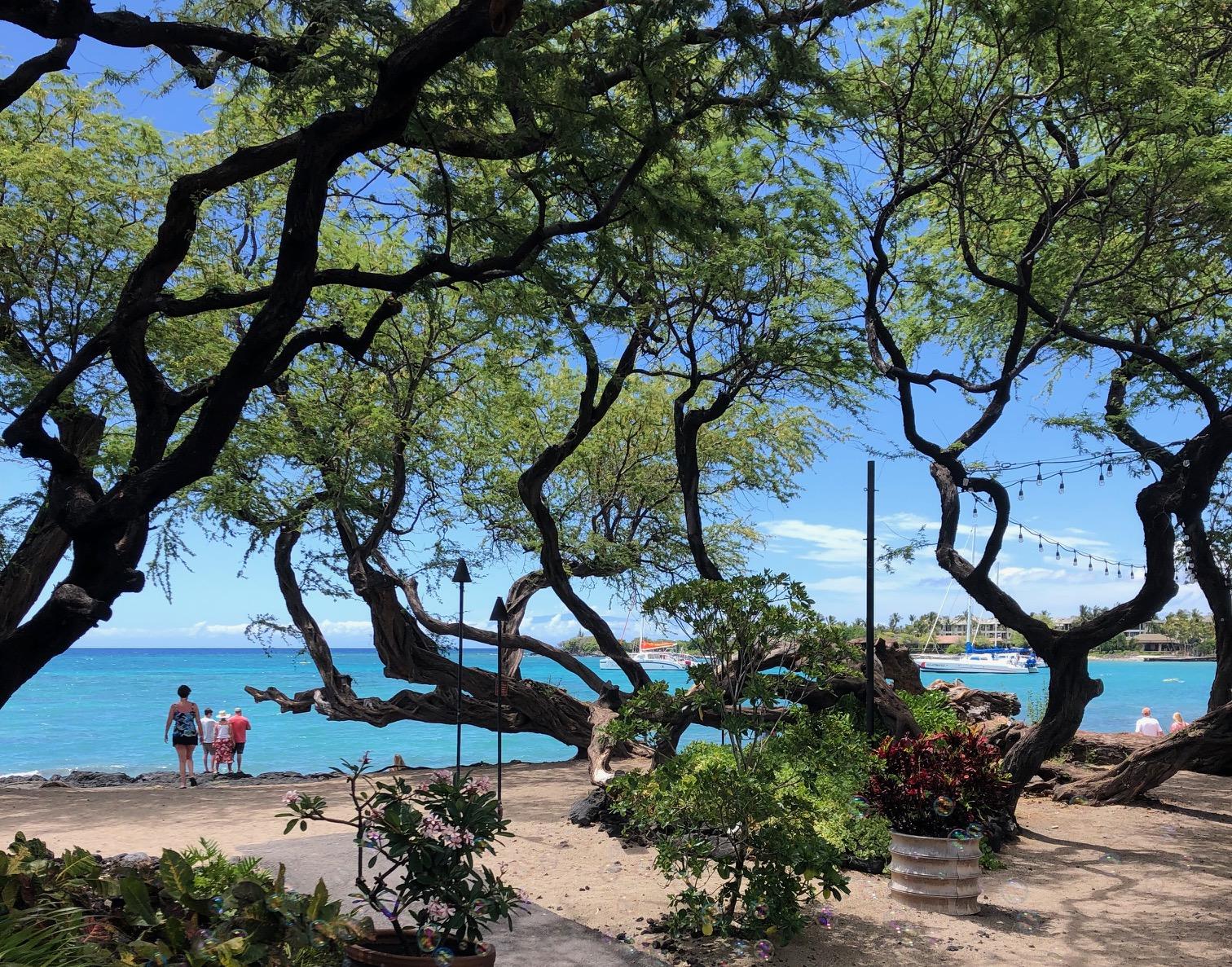 A-Bay at Waikoloa Beach Resort.