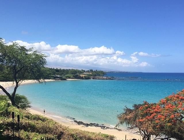 2015 mauna kea beach.jpg