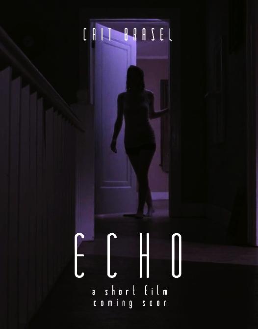 echo teaser poster.png
