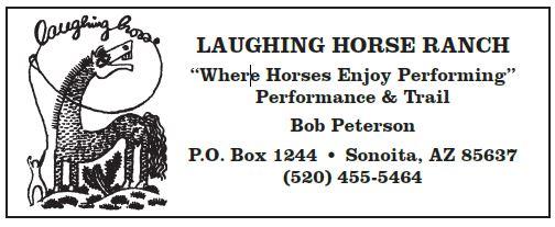Laughing Horse.JPG