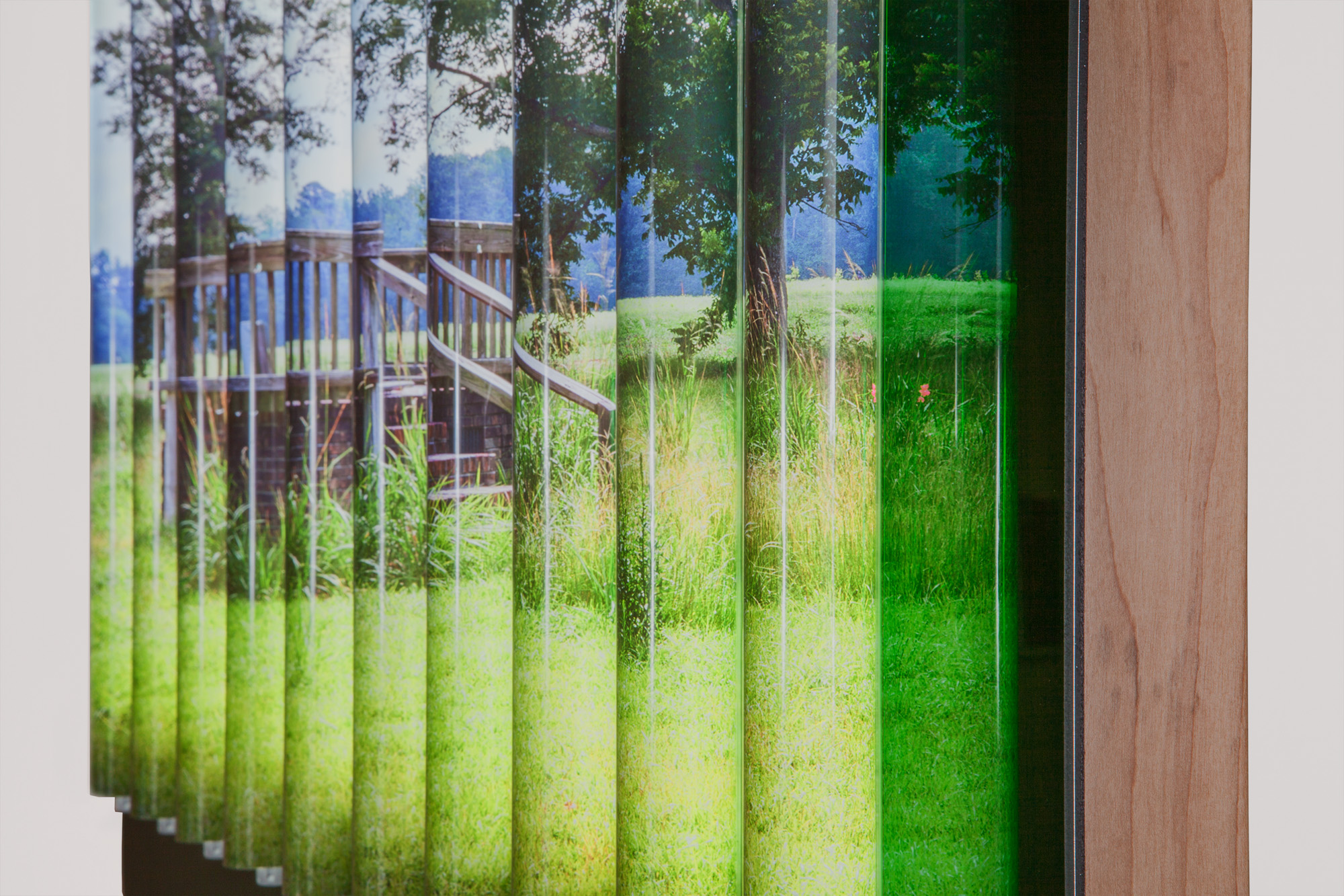 Baclawski_FWMoA-Greener-Pastures-4.jpg