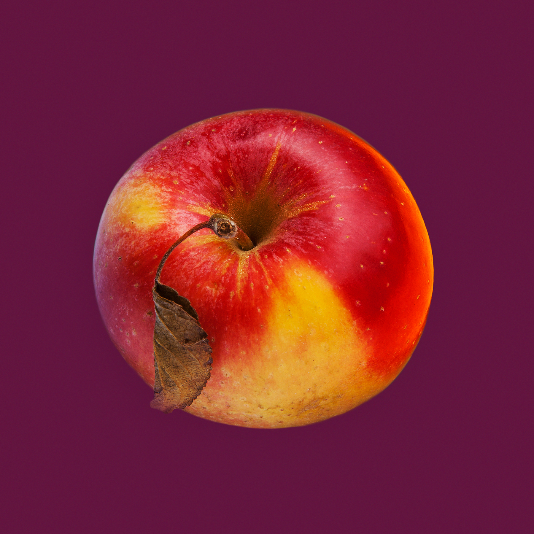 APPLE-ORGANIC-FRUIT-©-JONATHAN-R.-BECKERMAN-PHOTOGRAPHY.jpg