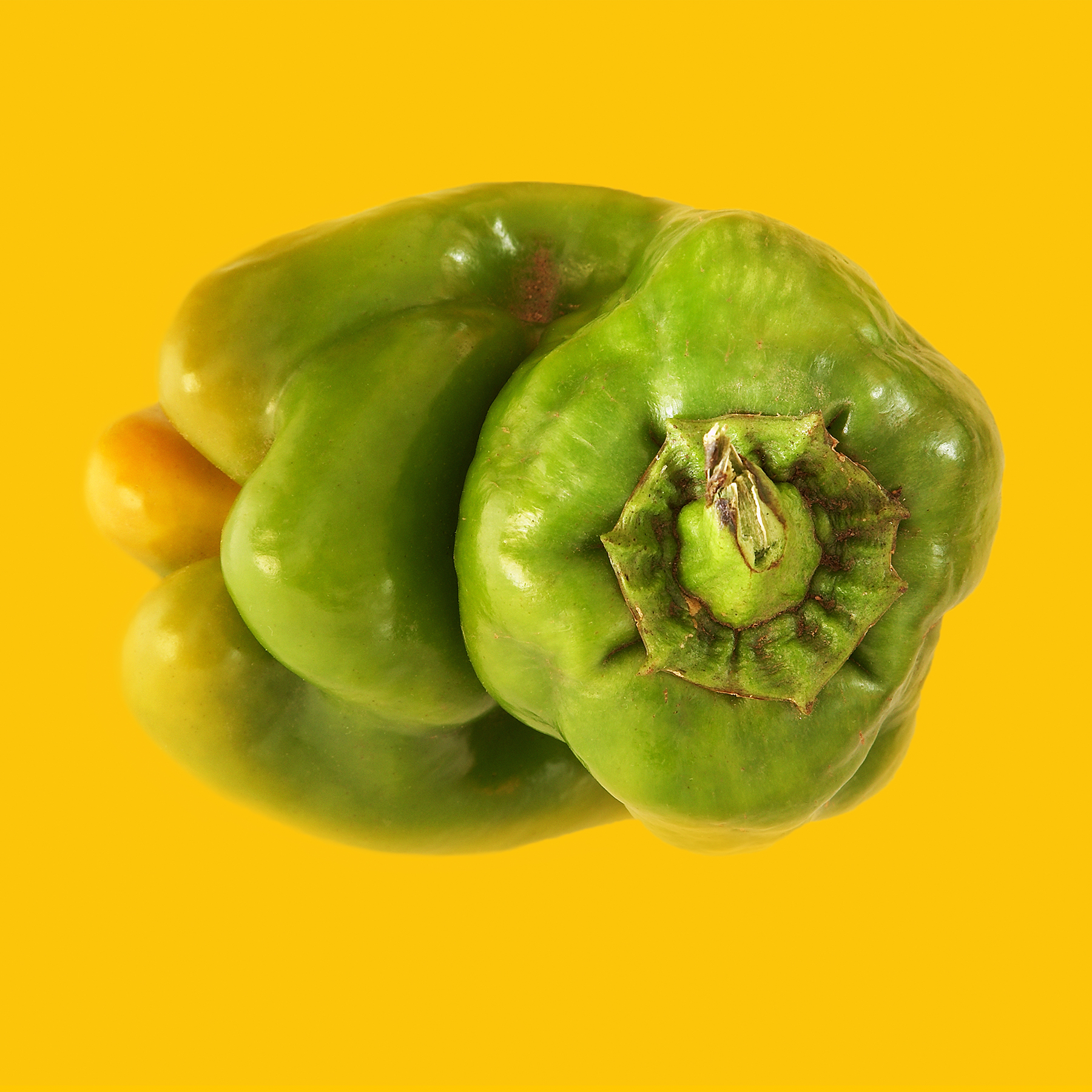 PEPPER-GREEN-ORGANIC-ON-ORANGE-02-©-JONATHAN-R.-BECKERMAN-PHOTOGRAPHY.jpg