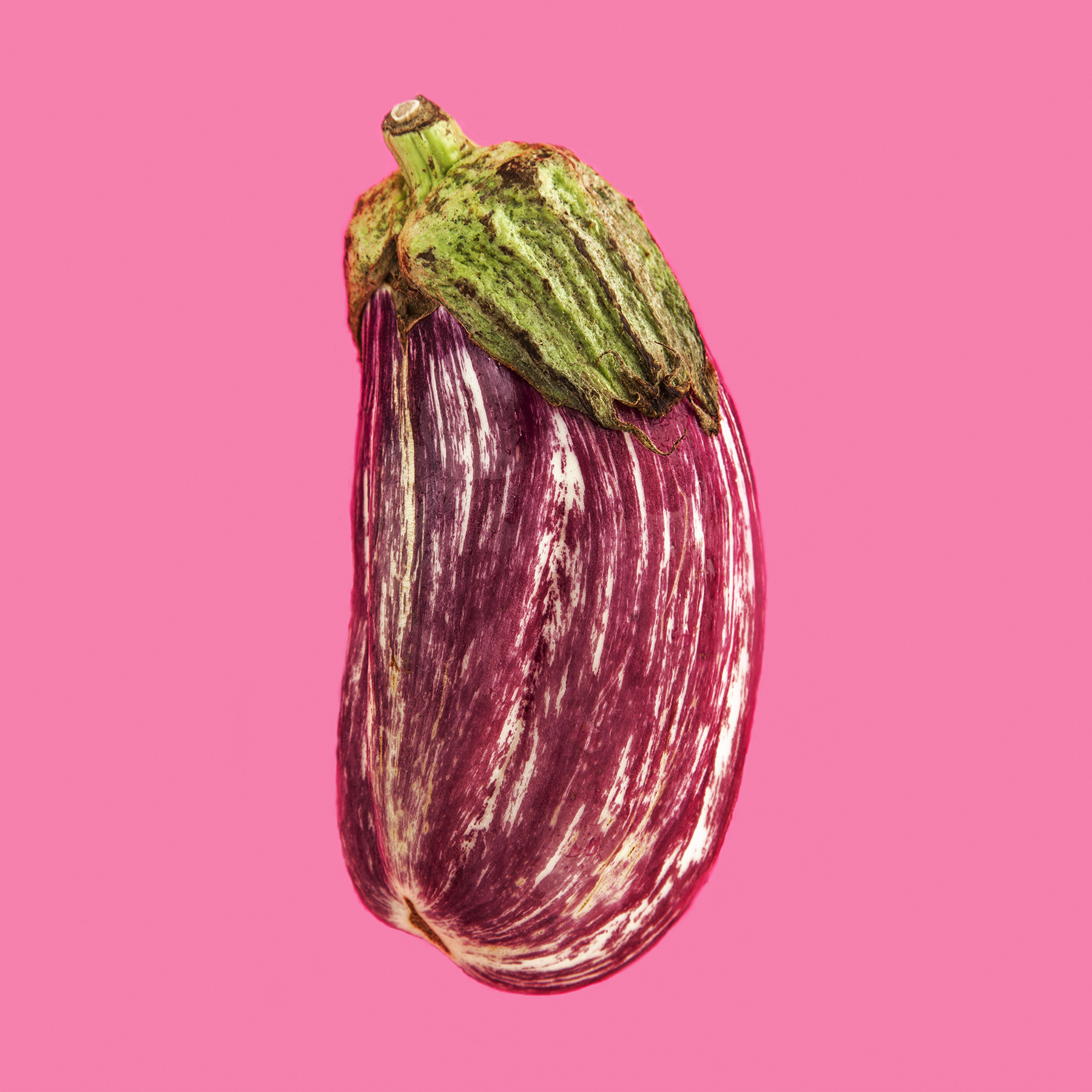 EGGPLANT PURPLE STRIPPED THE HICKORIES FARM ORGANIC FOOD VEGETABLE © JONATHAN R. BECKERMAN PHOTOGRAPHY.jpg