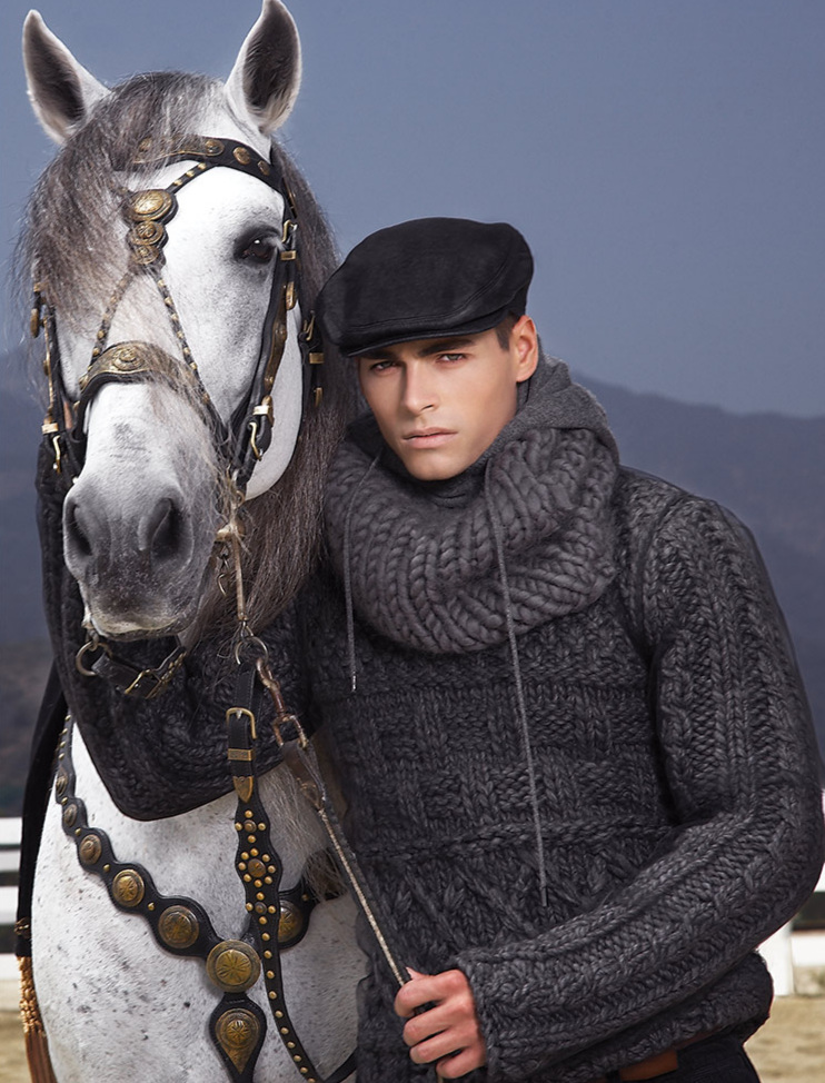 HORSE-STORY_14-F.jpg