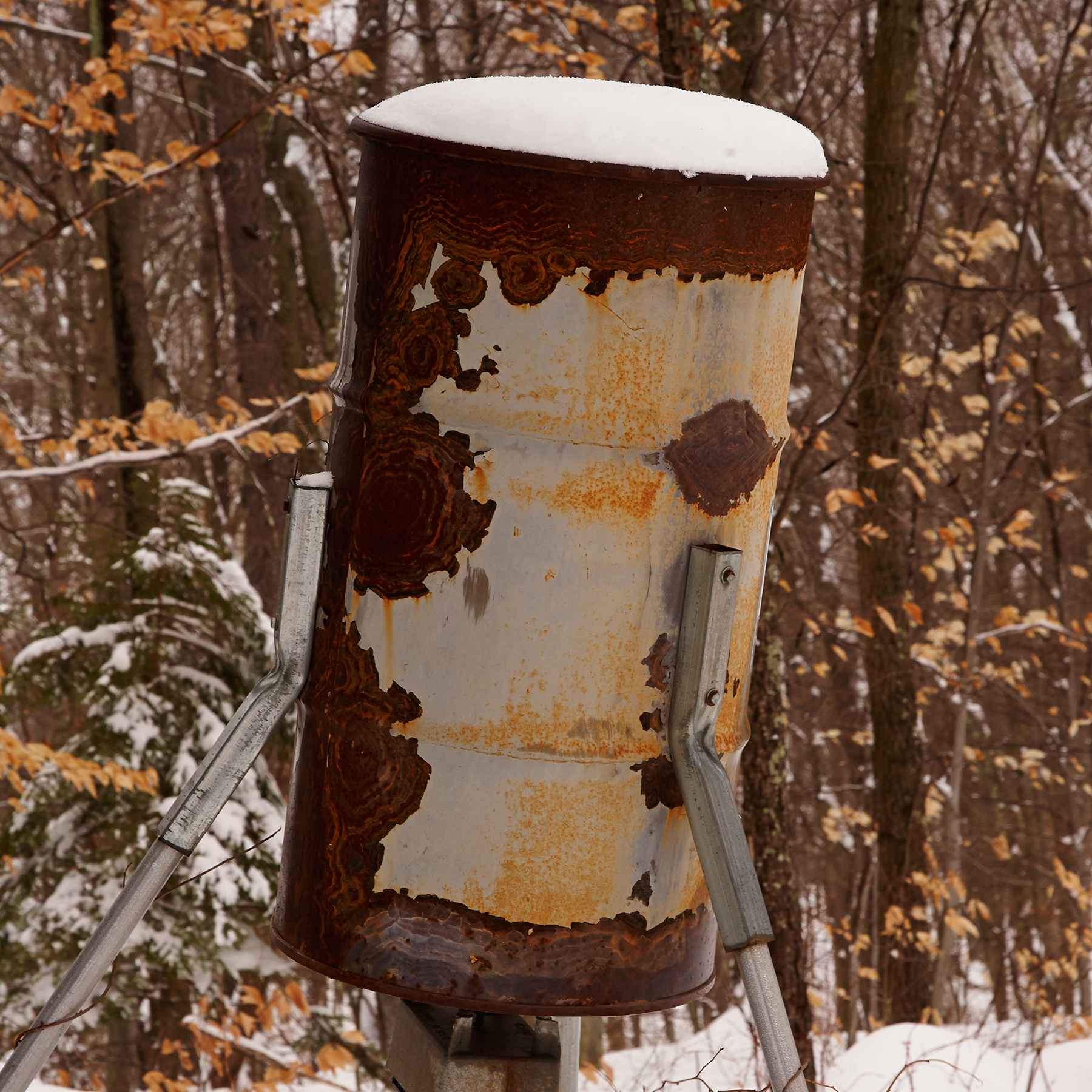 DEER-FEEDER-IN-SNOW-01-AT-WILTSHIRE-FARM-©-JONATHAN-R.-BECKERMAN-PHOTOGRAPHY.jpg