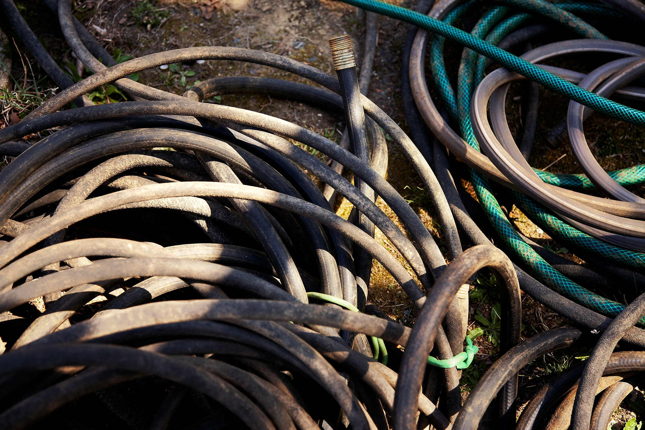 GARDEN-HOSE-WILTSHIRE-FARM-©-JONATHANR.-BECKERMAN-PHOTOGRAPHY-040612.jpg