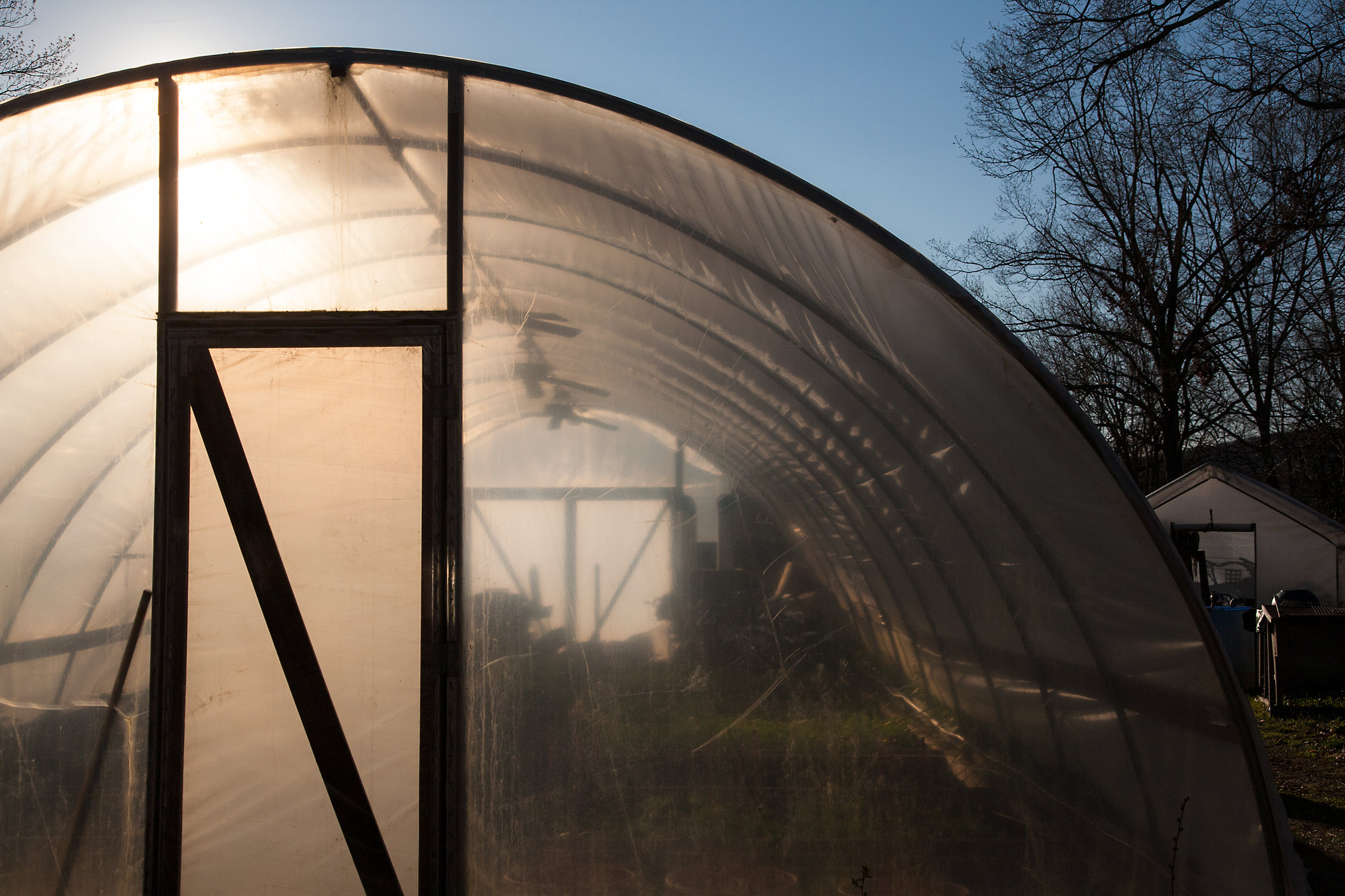 GREENHOUSE-WILTSHIRE-FARM-CT-©-JONATHAN-R.-BECKERMAN-PHOTOGRAPHY_040612.jpg
