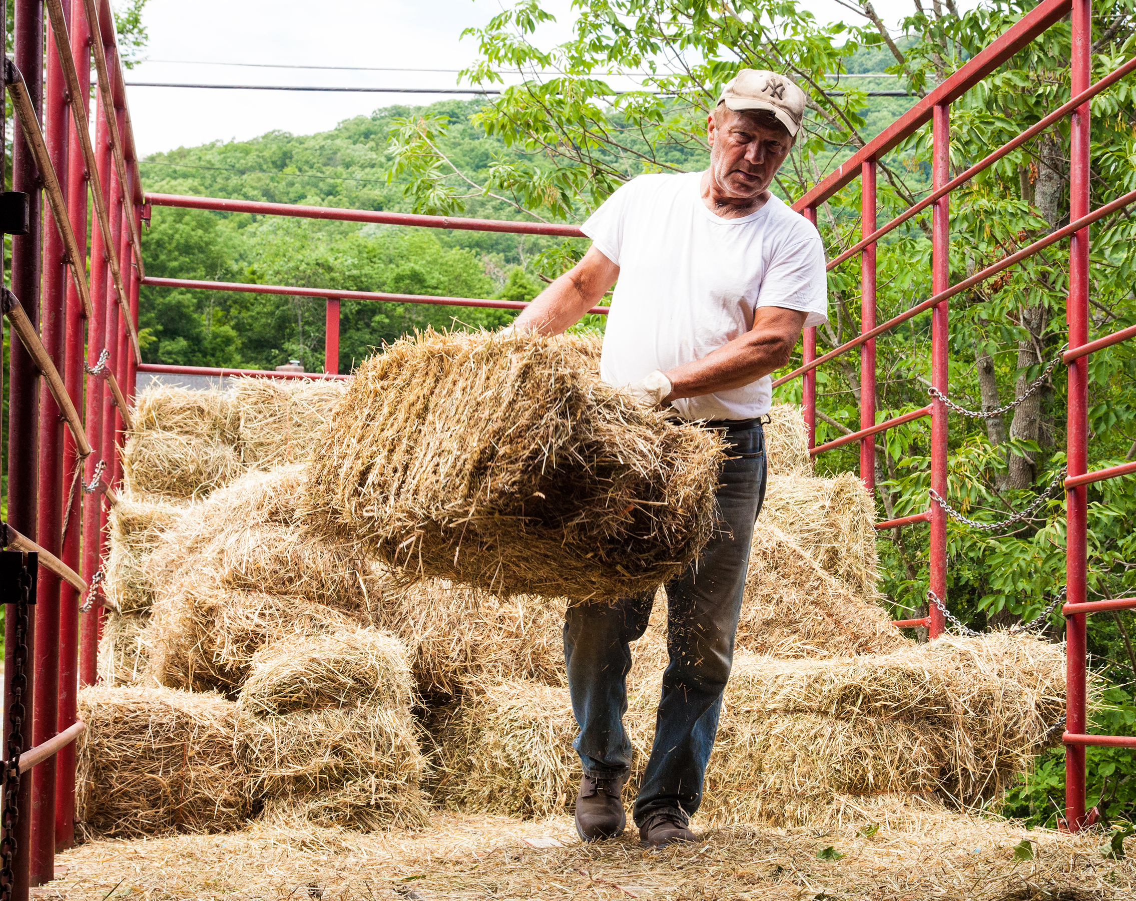 HAY-STACKING-FARMER-KEN-STONEWALL-DAIRY-FARM-2016-©-JONATHAN-R.-BECKERMAN-PHOTOGRAPHY-10.jpg
