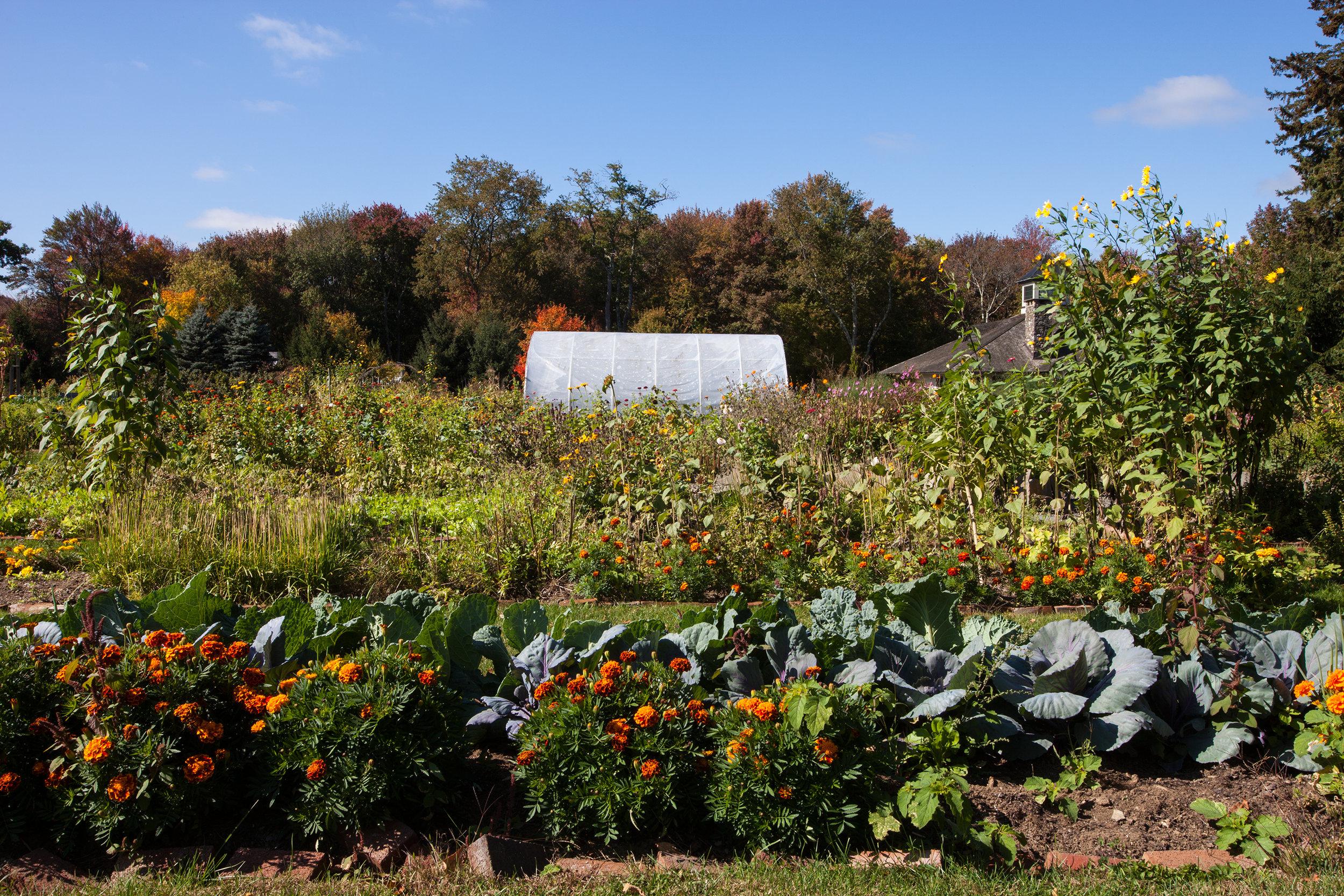 WINVIAN-FARM-CT-GARDEN-LANDSCAPE-©-JONATHAN-R.-BECKERMAN-PHOTOGRAPHY-100715_-457.jpg