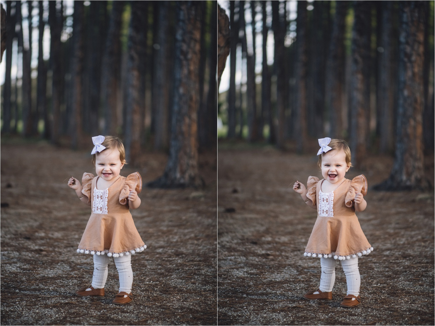 Pine_forest_family_photography_shoot - Gold Coast Family Photographer_0004.jpg