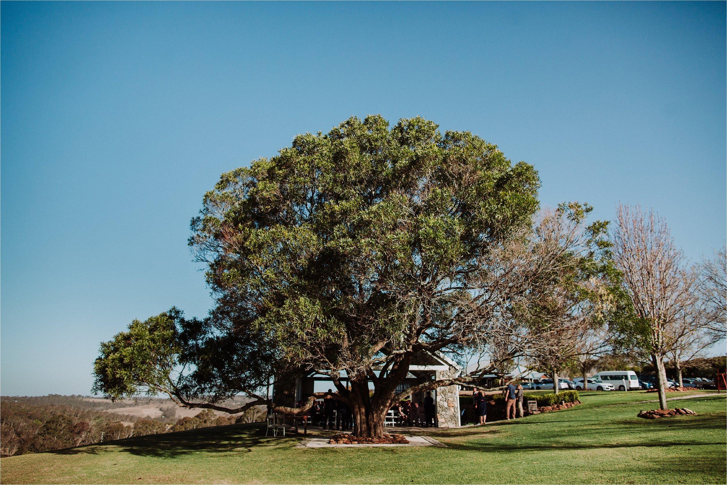 Towoomba - Preston - Peak - Wedding - Gold - Coast - Wedding - Photographers_0031.jpg