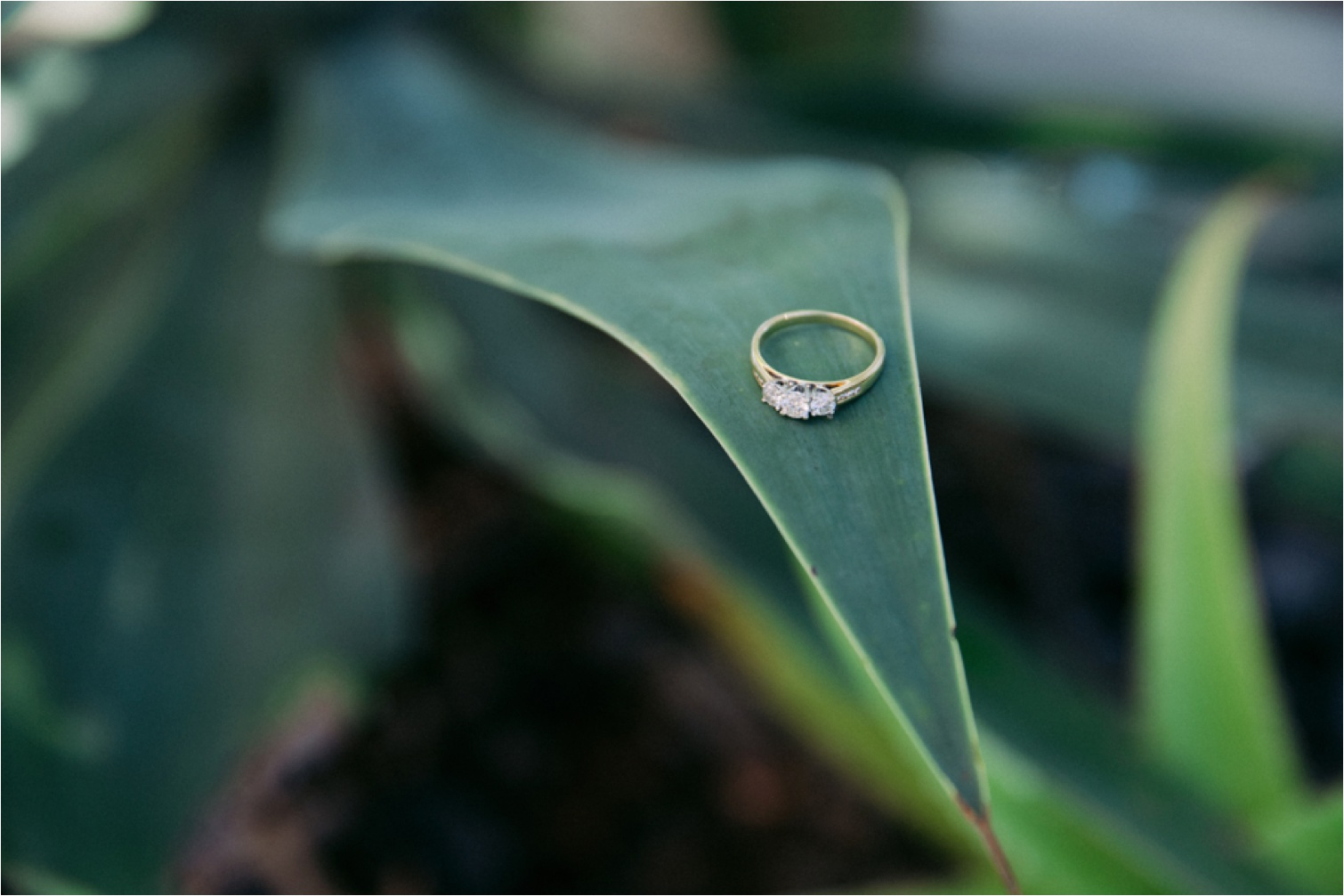 Bribie_Island_Wedding_Photography_0001.jpg