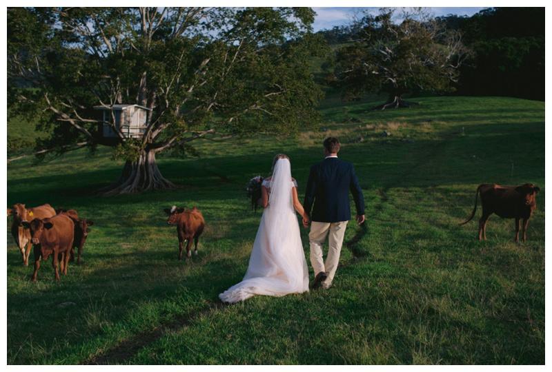 Cowbell_Creek_Wedding_Photography_0161.jpg