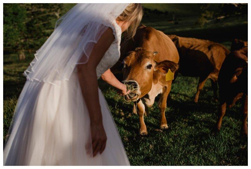 Cowbell_Creek_Wedding_Photography_0165.jpg