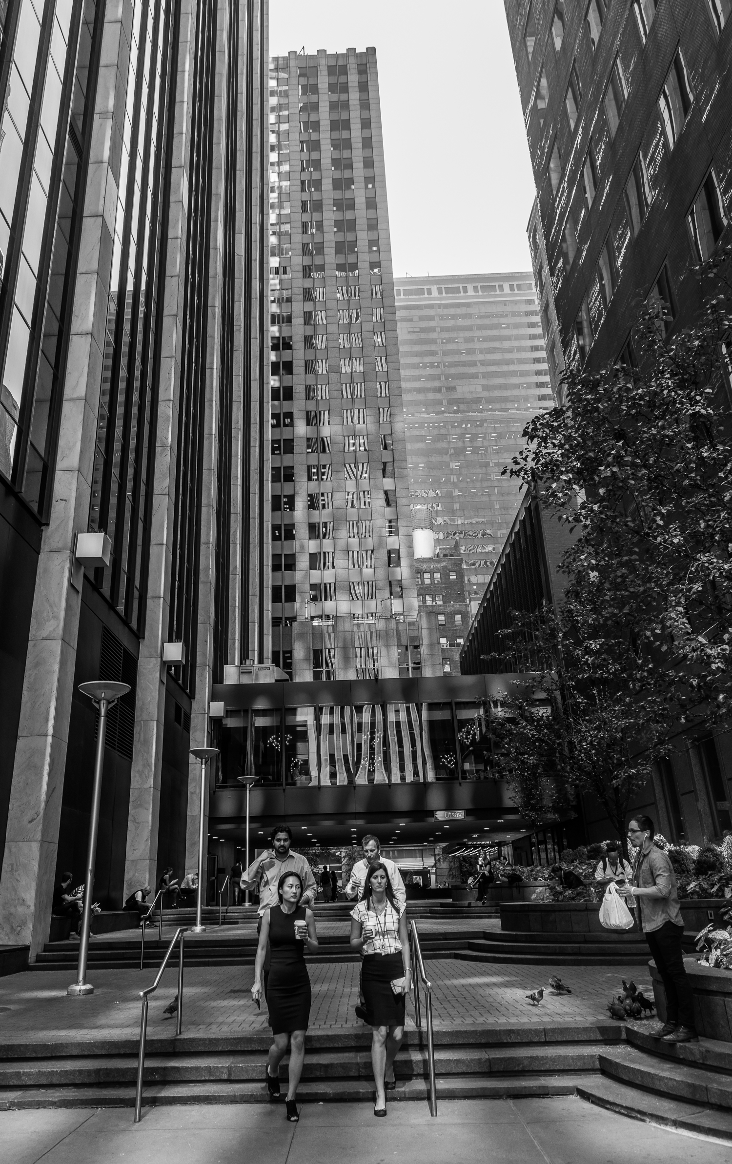 NYC-_HWF5765.jpg