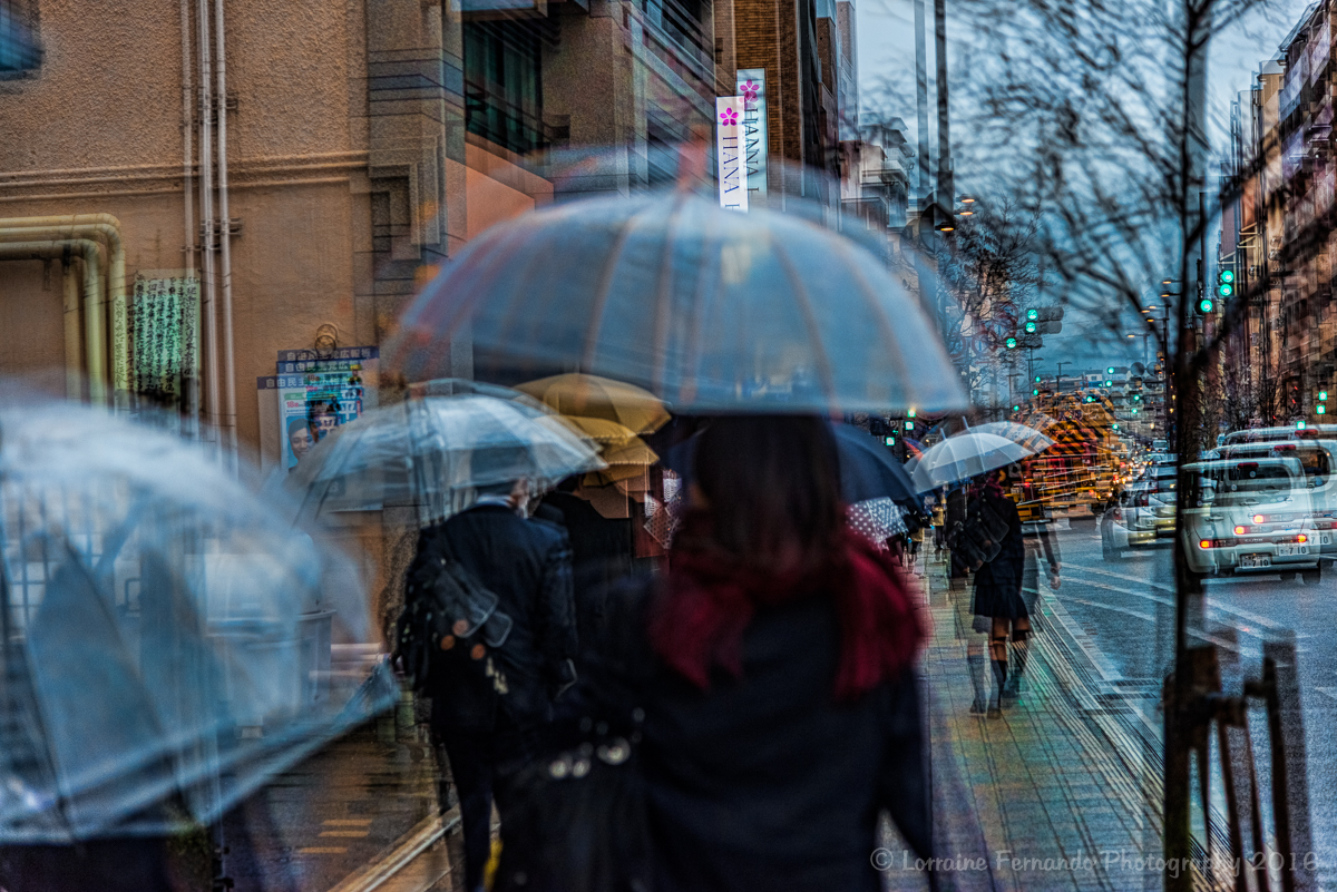 Kyoto Rain 1