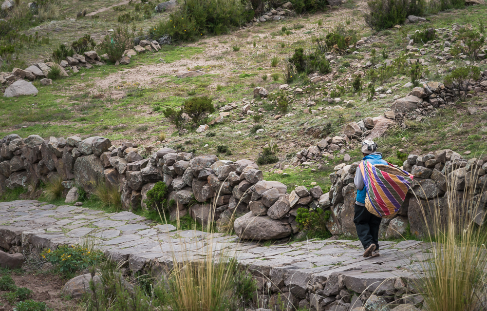 Here, everyone carries a pack on their backs. When loads are too heavy, llamas are used to carry loads up and down the hills.