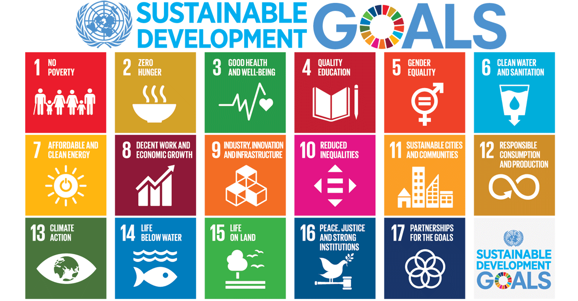 UN Sustainable goals .png