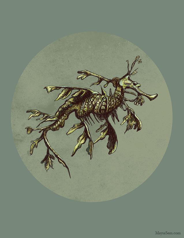 Leafy Seahorse