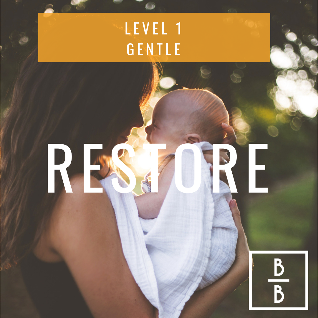 Welcome to RESTORE! - Restore is the first program new moms should take. It is designed for moms a minimum of 6 weeks postpartum. You already know that birth takes a major toll on your body. Generally speaking, this is not the time to put on those cute running shoes and hit the trails again for a slow 5 miler. There are some things that need to be restored to their pre-baby functionality. If you go too fast you risk injuring yourself. If you go too slow, you'll feel sluggish when you need to be chasing a crawling toddler all over the home. This program was designed to restore your mombody core. Not too fast, and not too slow.Before you begin, be sure to check out the comprehensive starter guide here.
