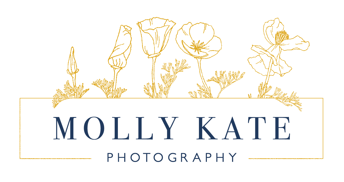 MollyKatePhotography_Logo_FINAL-01_WebTransparent.png