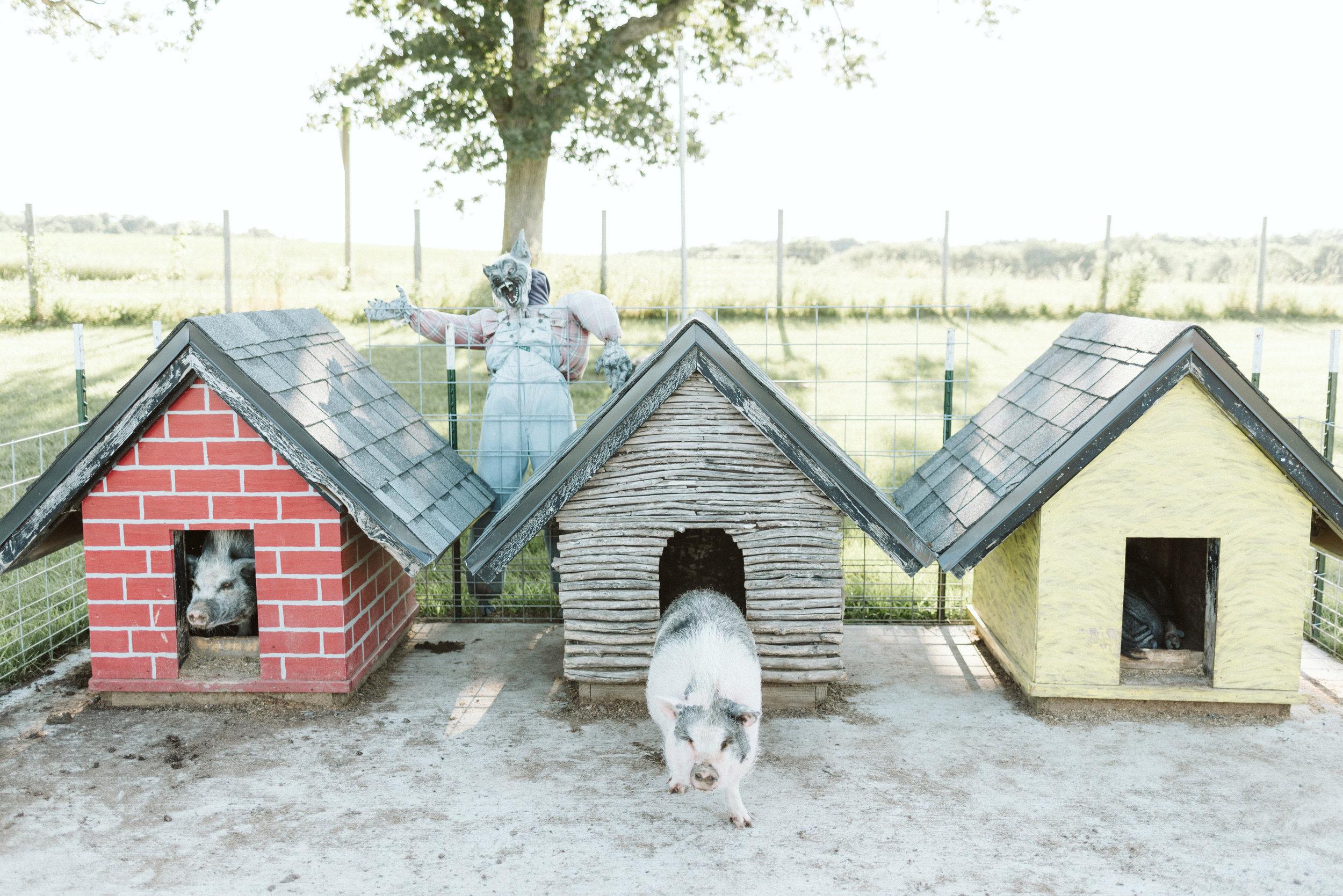 Busy-Barns-Adventure-Farm_Wedding _Fort_atkinson_Wisconsin-Gavyn-Taylor-Photo (2 of 2).jpg