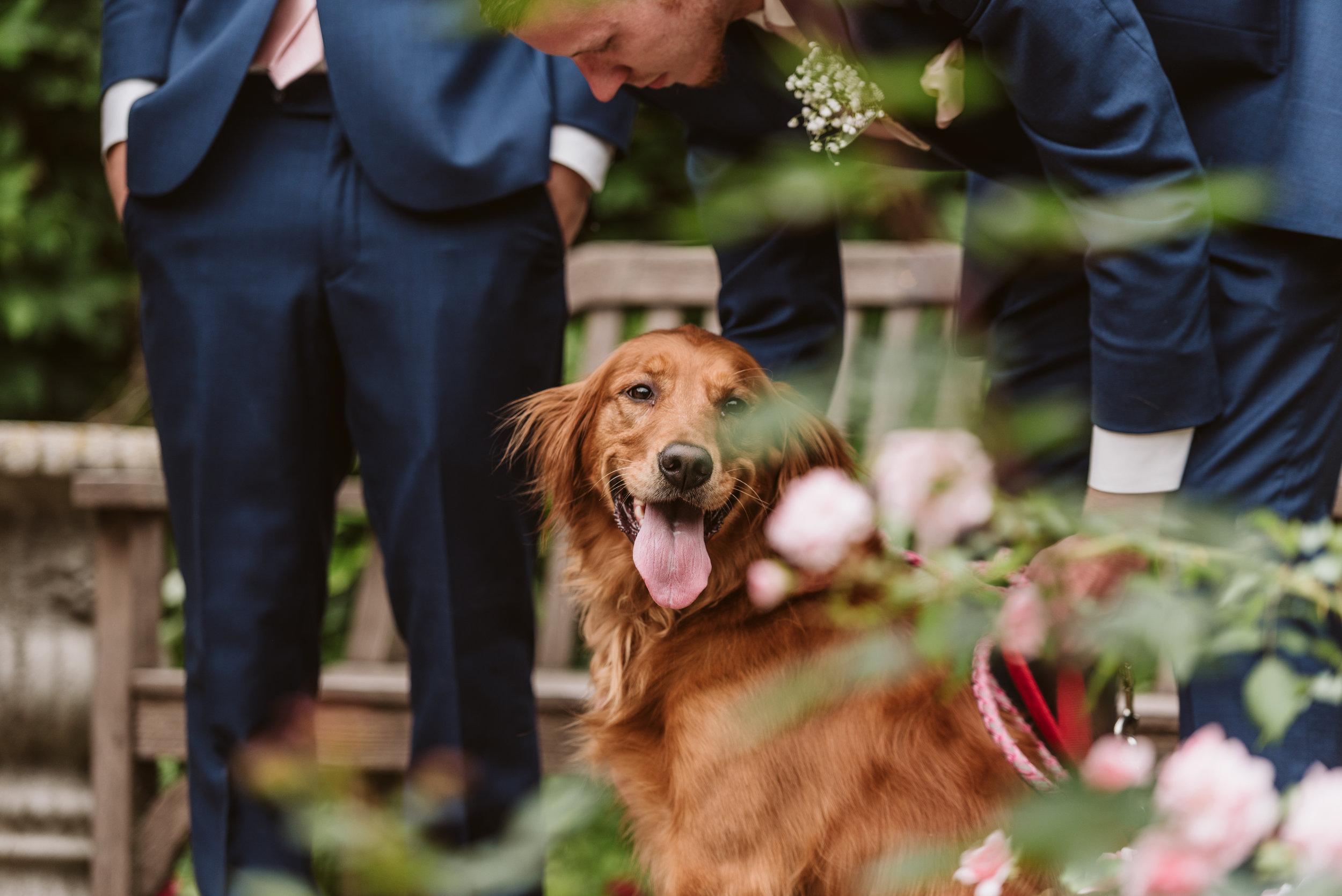 Lake Geneva Wedding Photographer