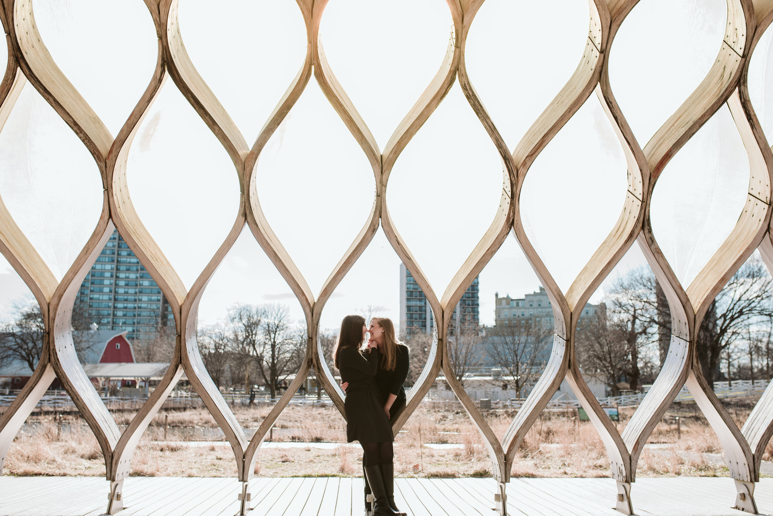 Honeycomb structure lincoln park engagement session chicago wedding photographer