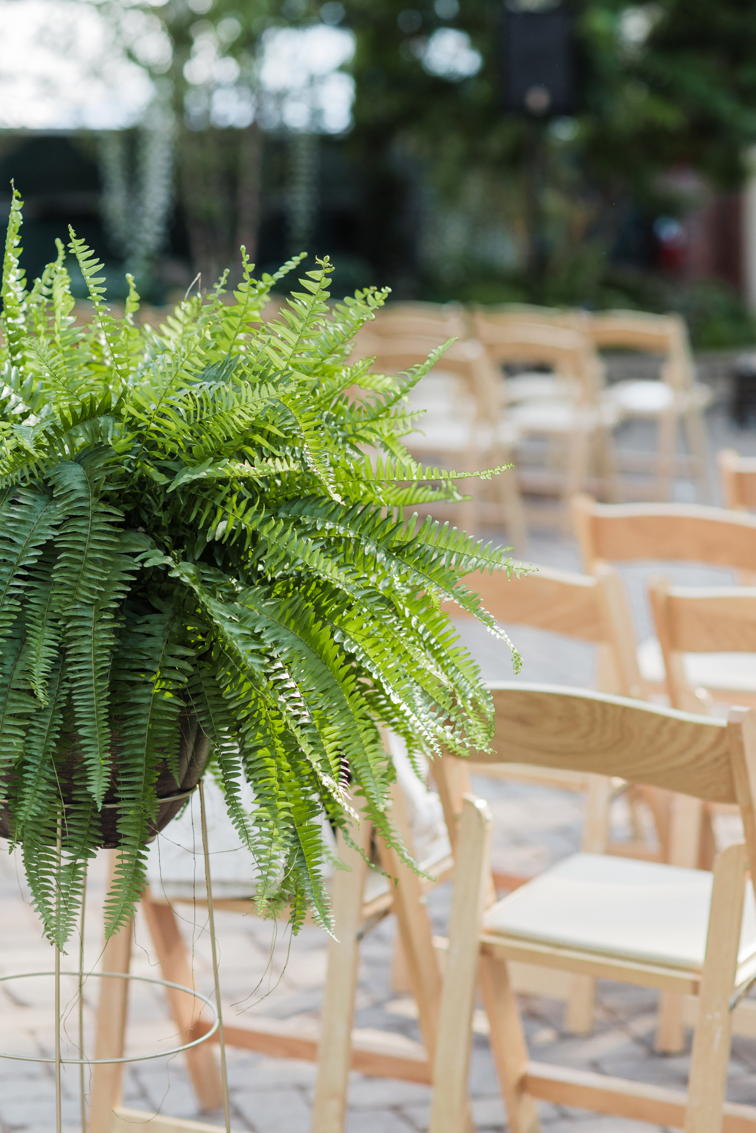 Garfield Park Conservatory Wedding Chicago