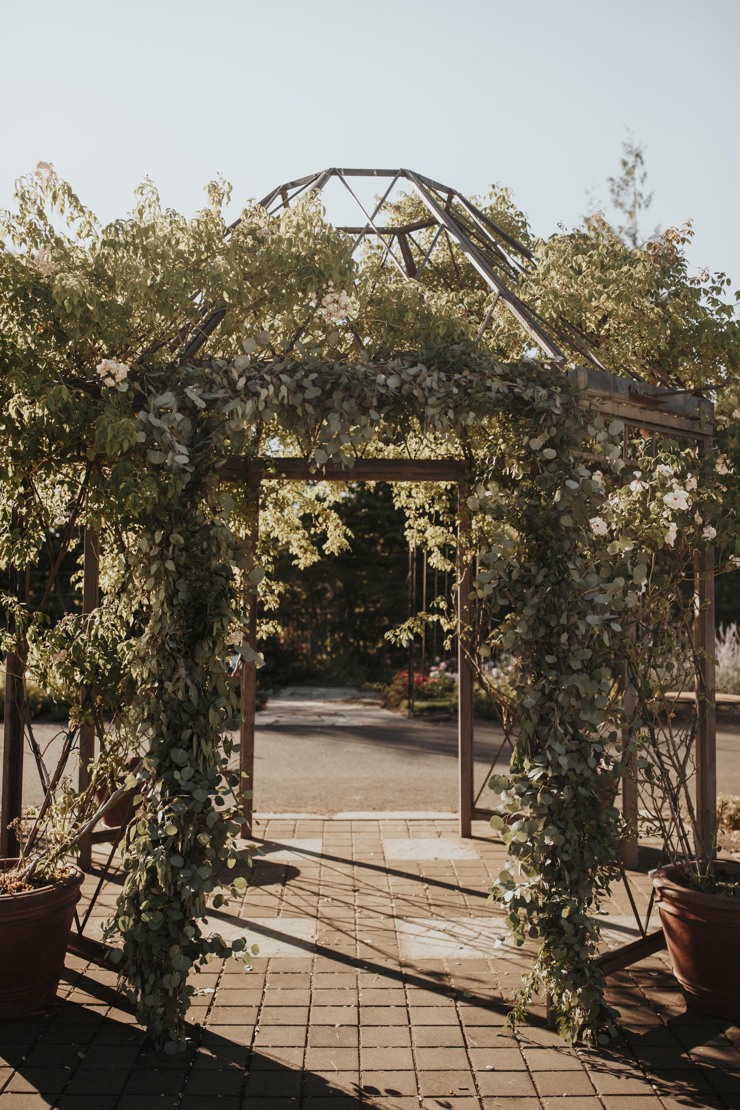 dawn-photo-oregon-gardens-cara-skylen-3.jpg