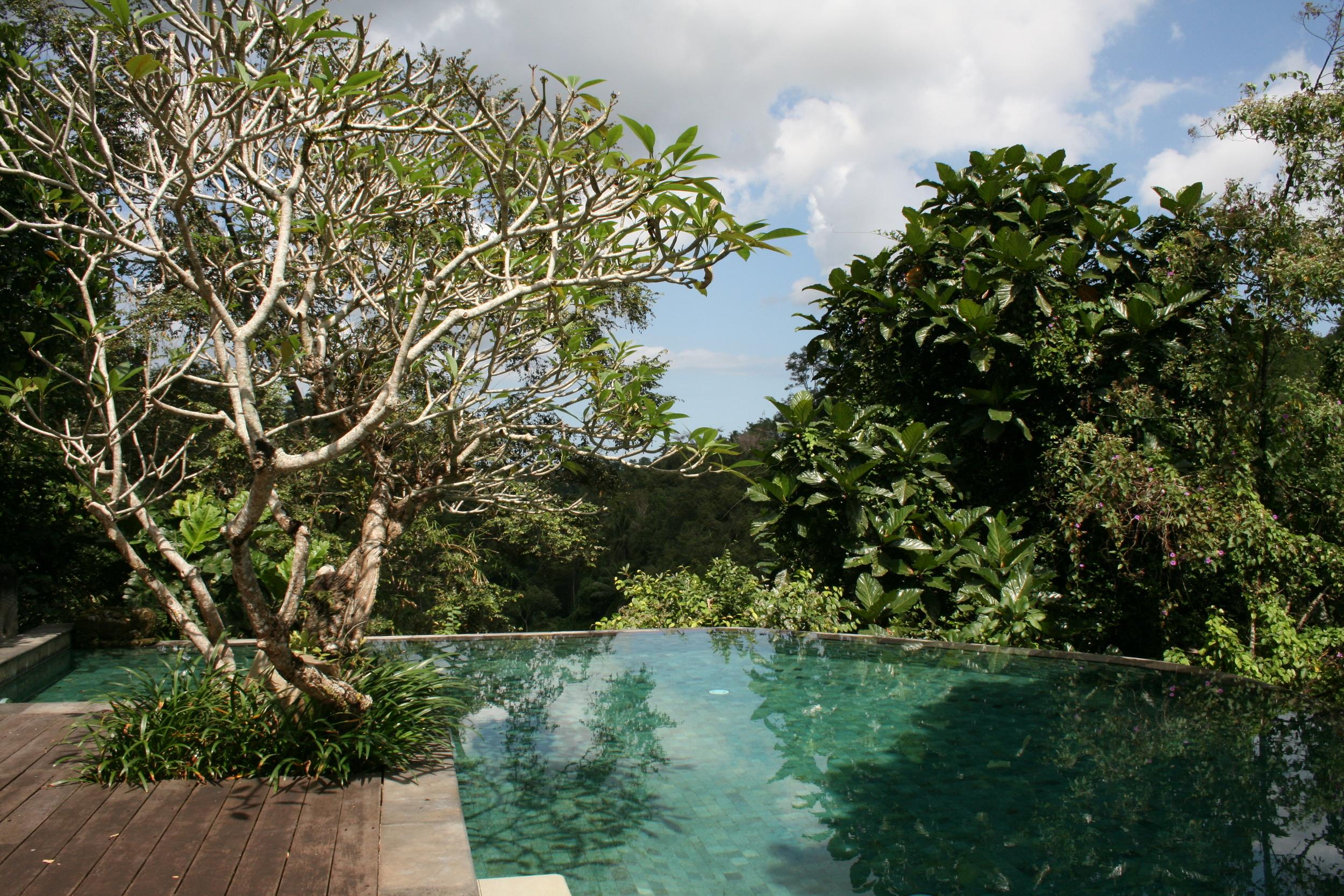Bali pool.JPG