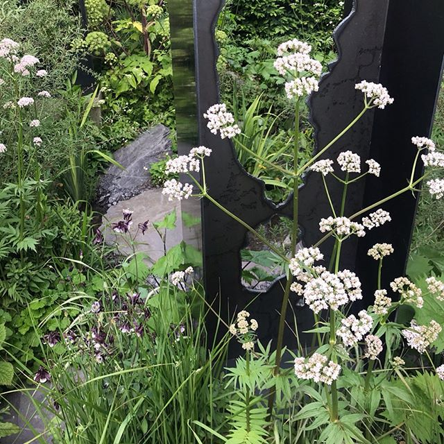 Last pics from Chelsea this year.  Seven gardens that had me lingering. . . . . #rhs #chelseaflowershow #rhschelseaflowershow #london #gardendesign
