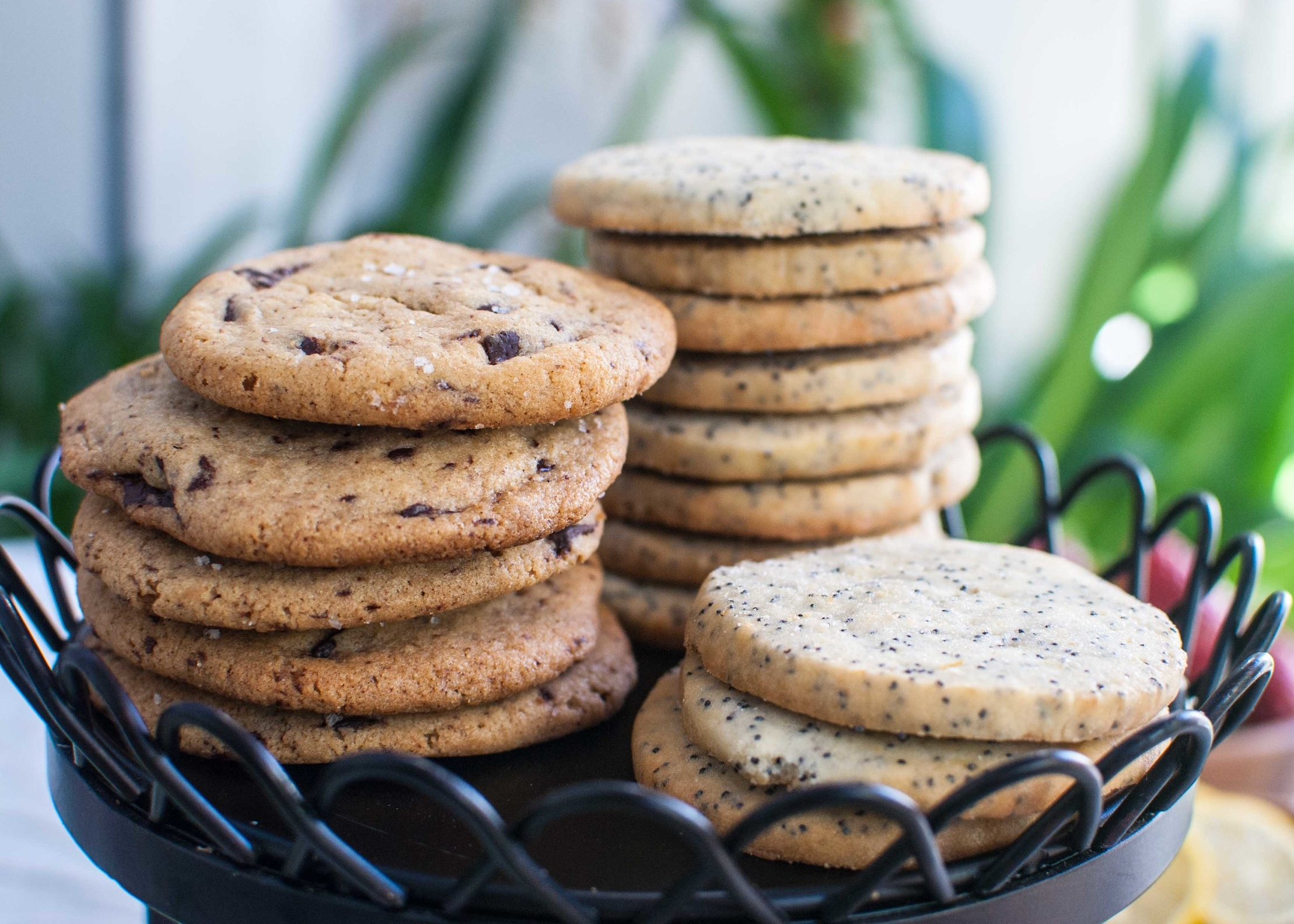 Salted Tahini Chocolate Chip Cookies and Lemon Poppyseed Cookies