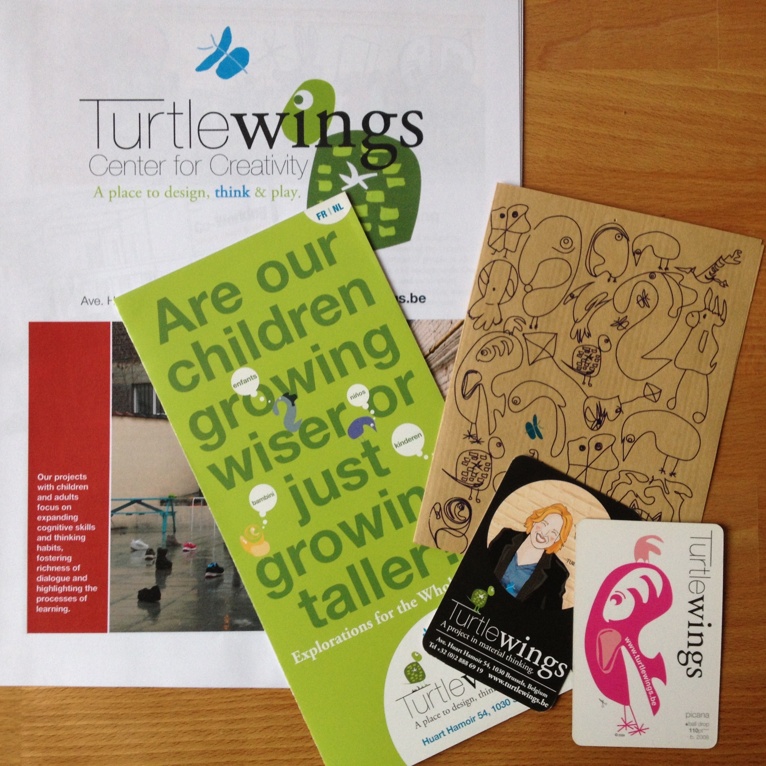 Turtlewings branding and marketing materials 2009-2014