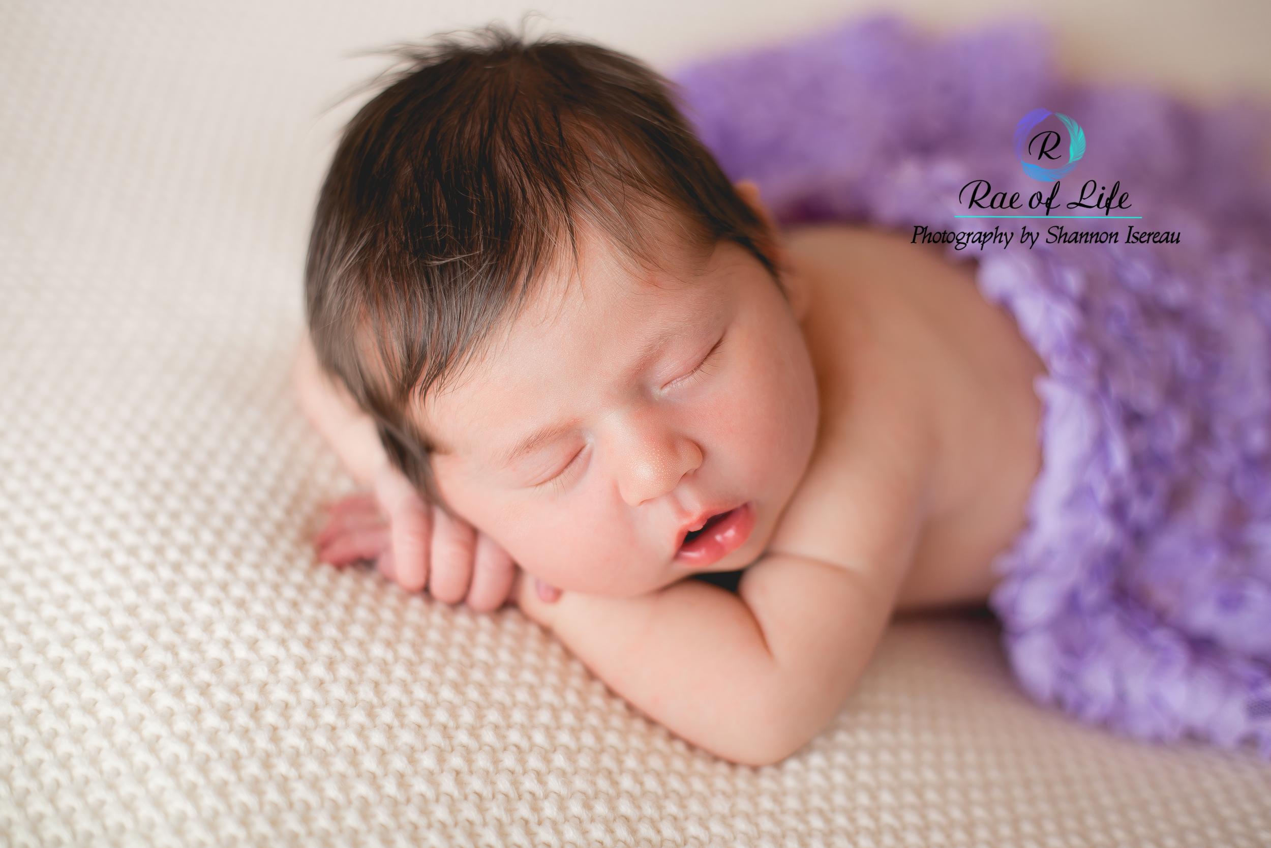 newborn photography pulaski ny