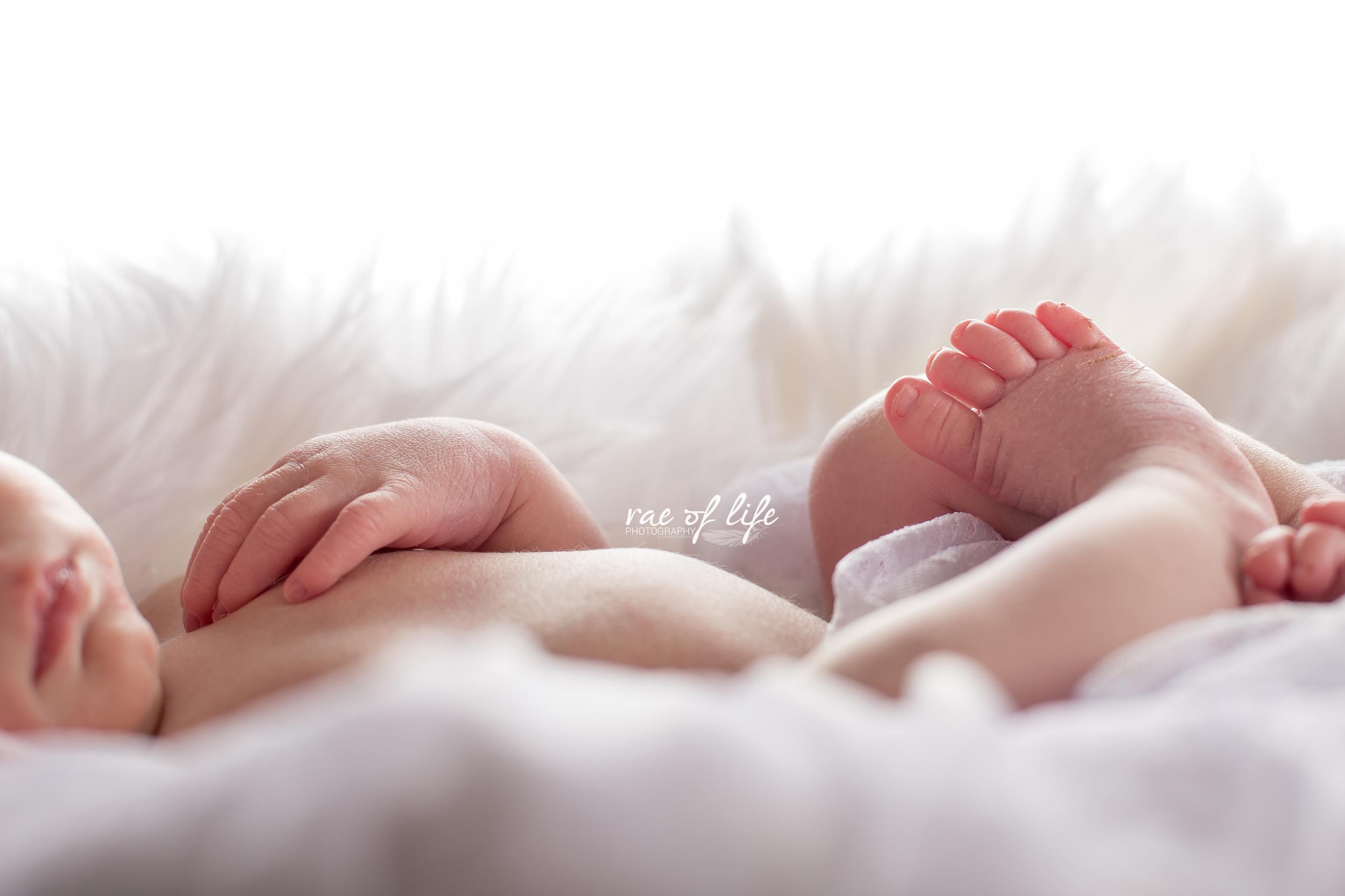 MIa Porter Newborn-0170.jpg