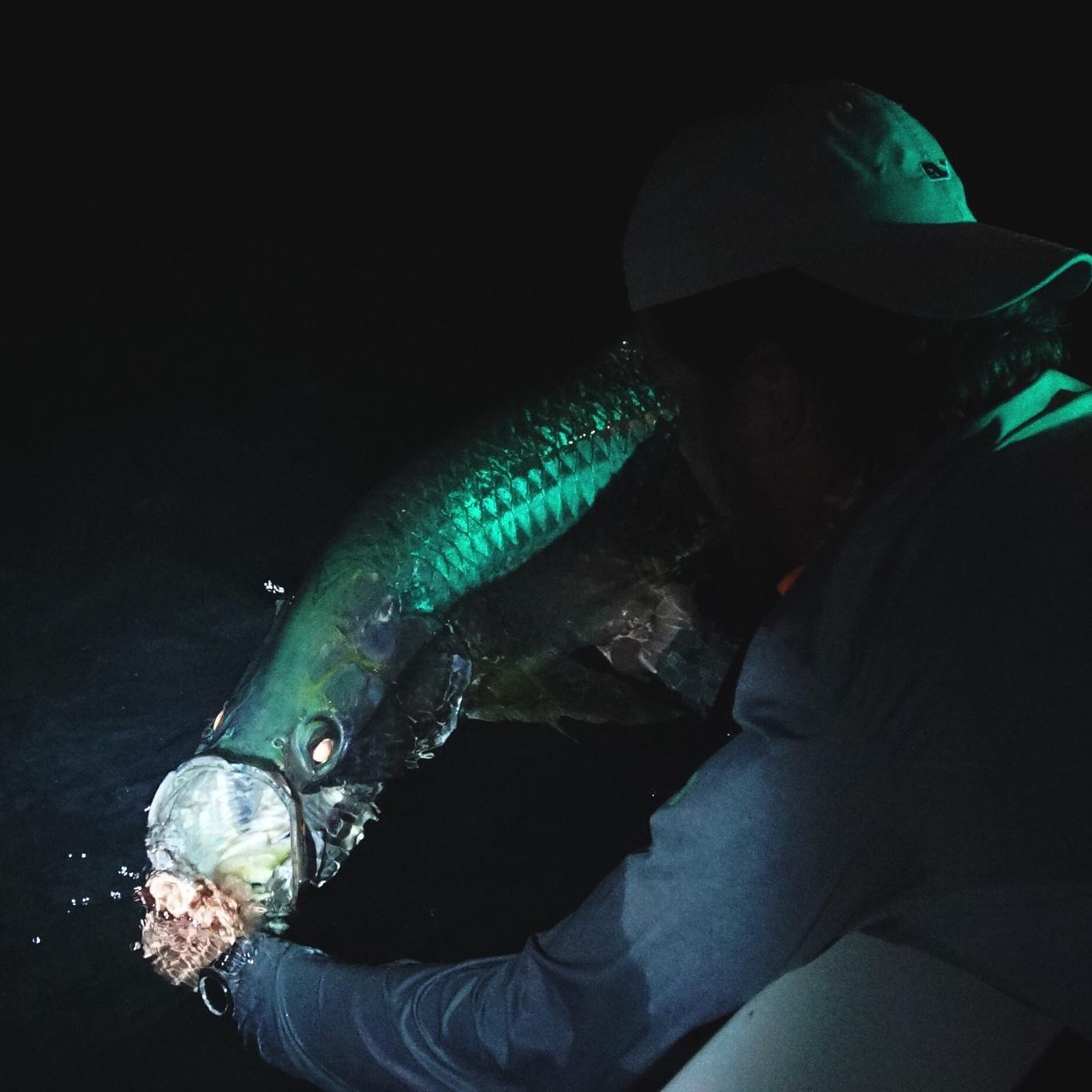 Tarpon Night Fly Fishing.jpg