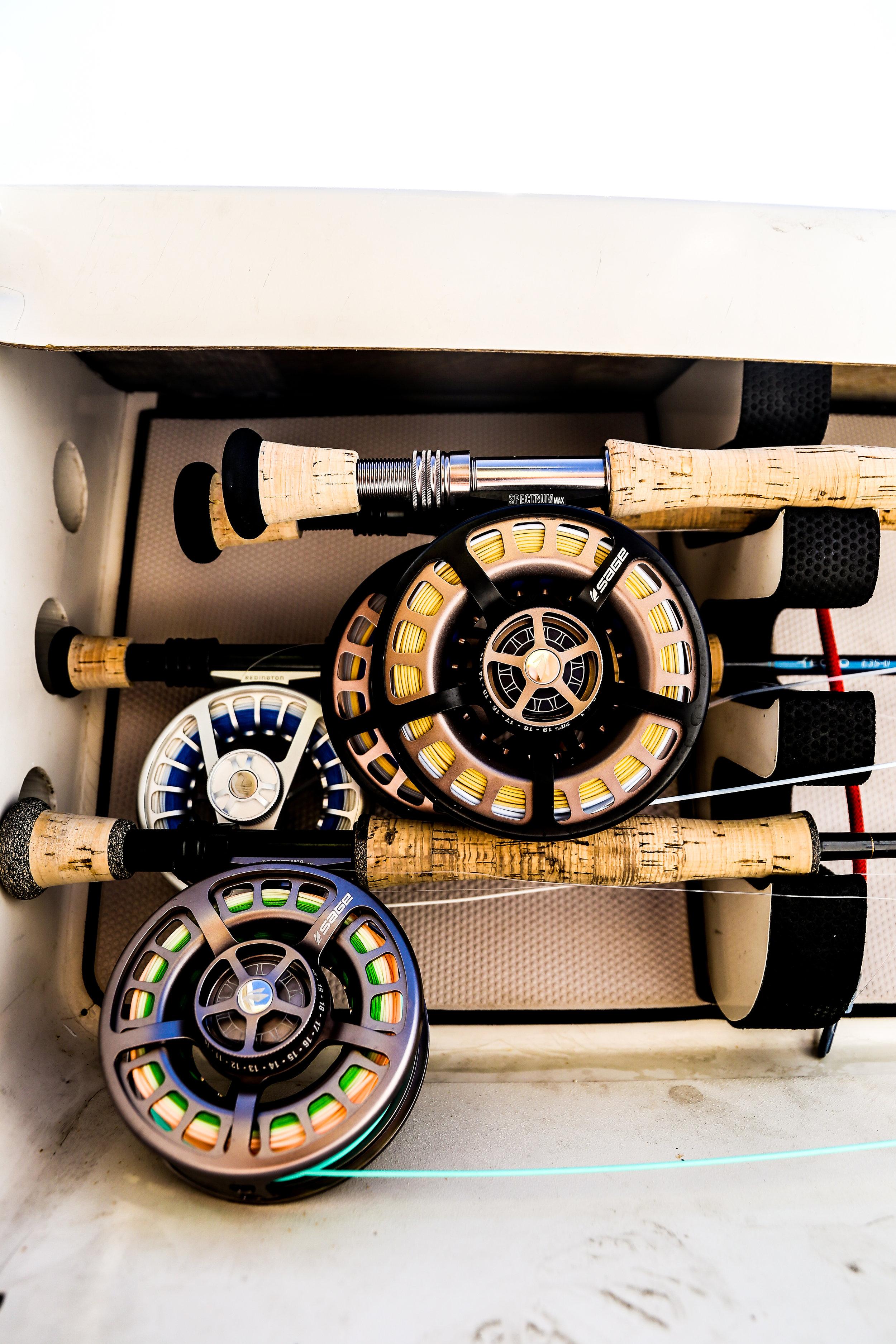 Fishing Reels.jpg