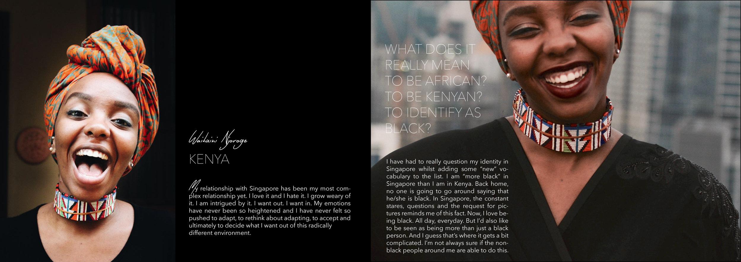 Diaspore Website4.jpg