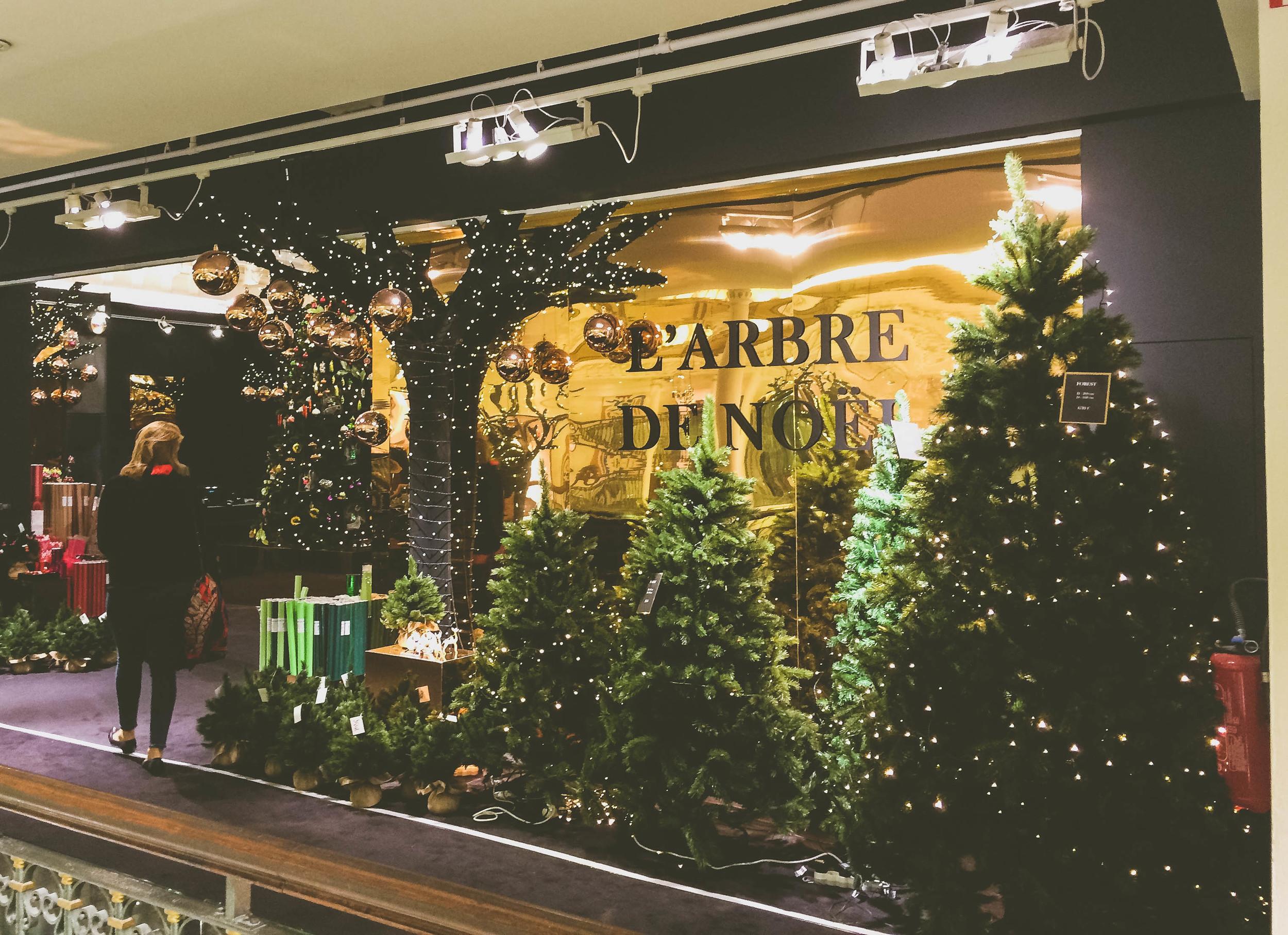 Christmas in Paris (13 of 27).jpg