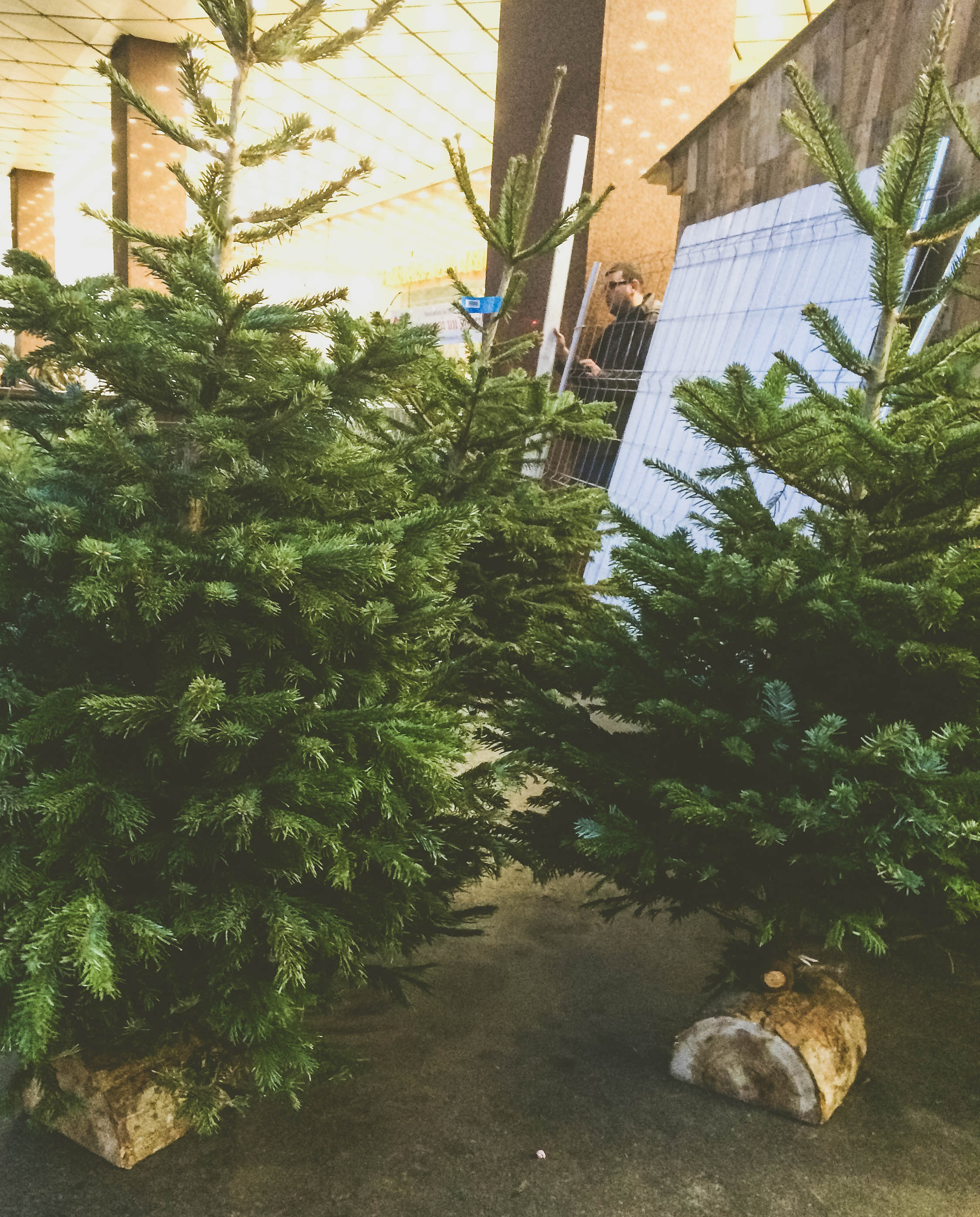 Christmas in Paris (25 of 27).jpg