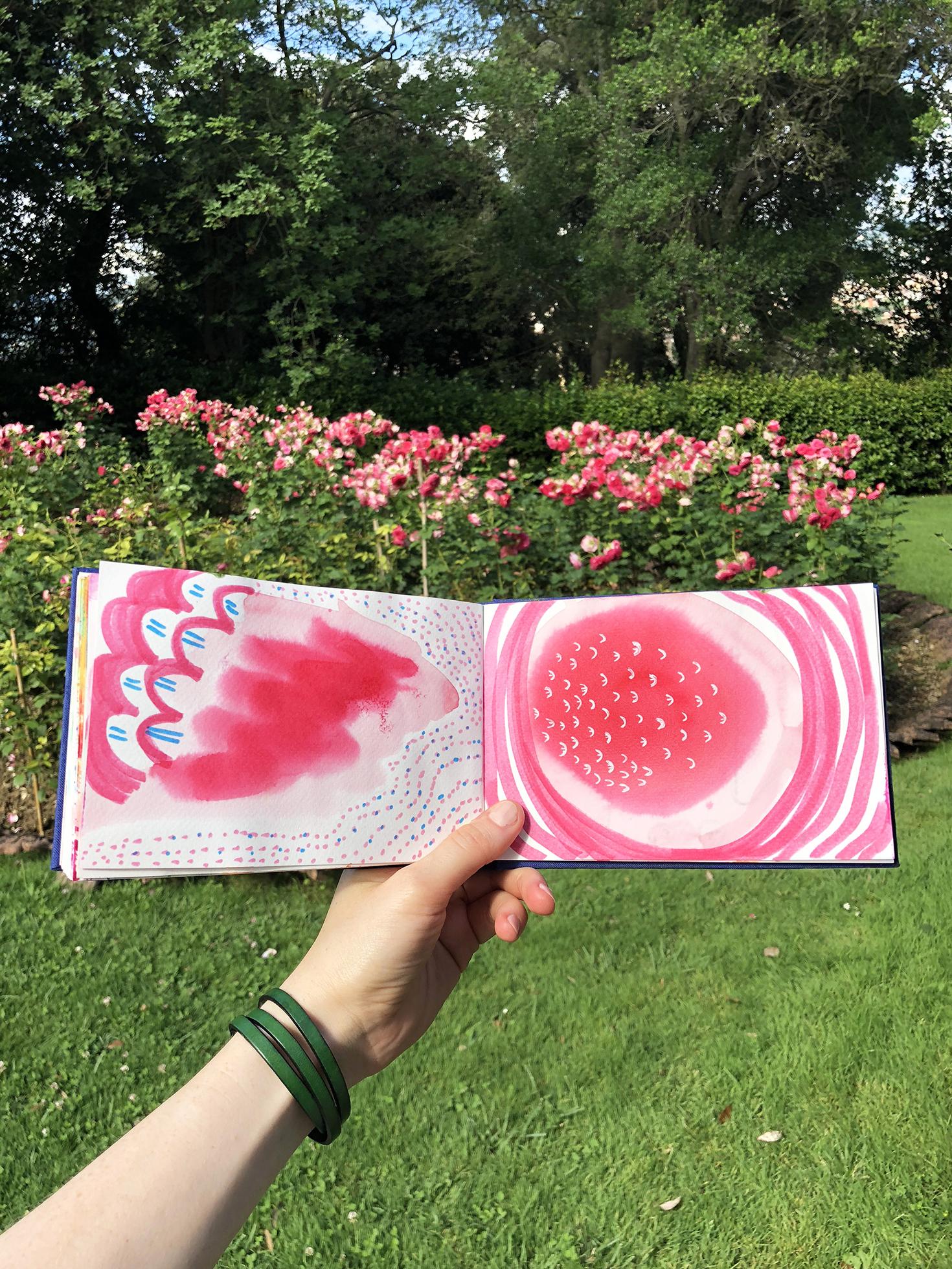 sketchbook, garden.jpg