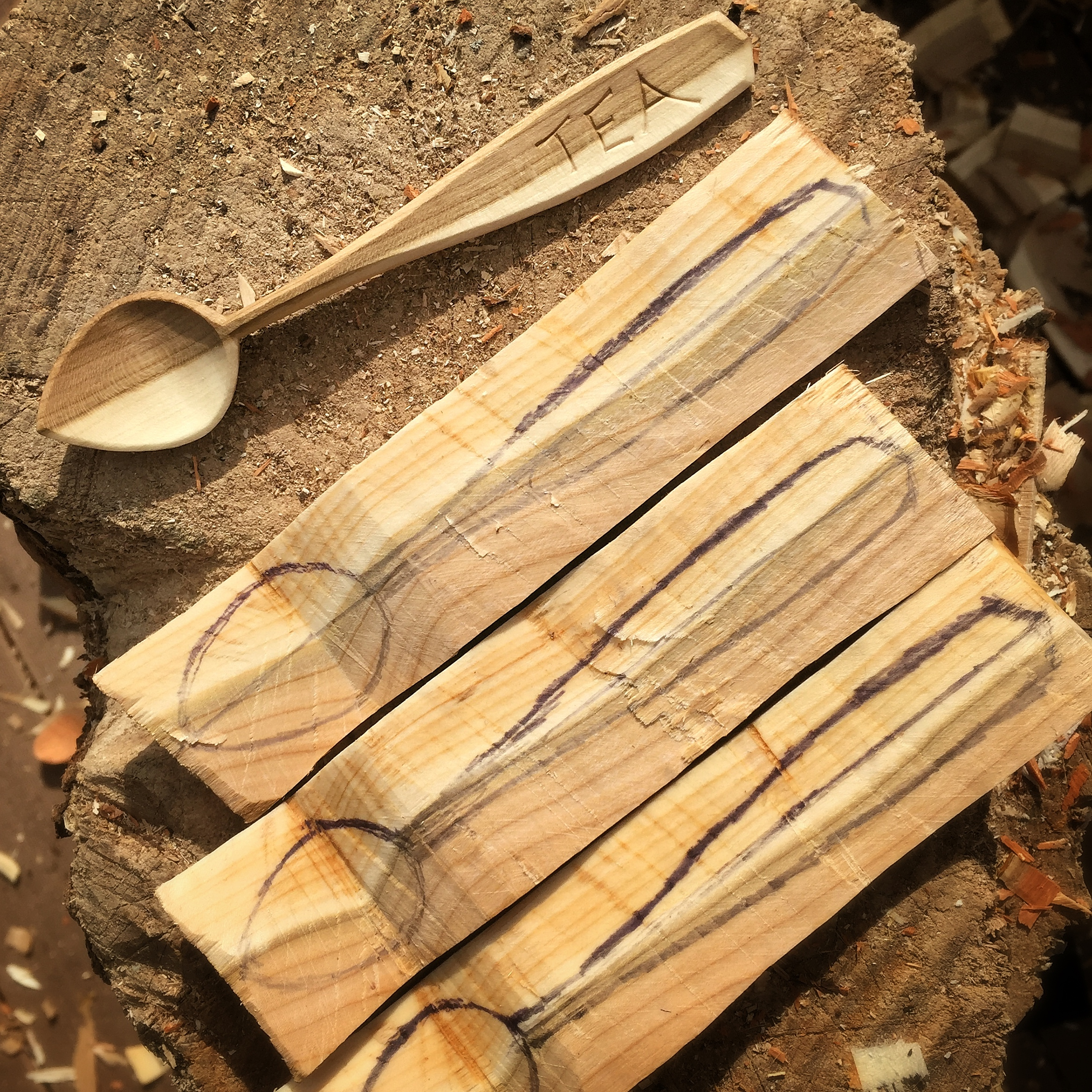 Tea Spoons ready to emerge from cherry wood.