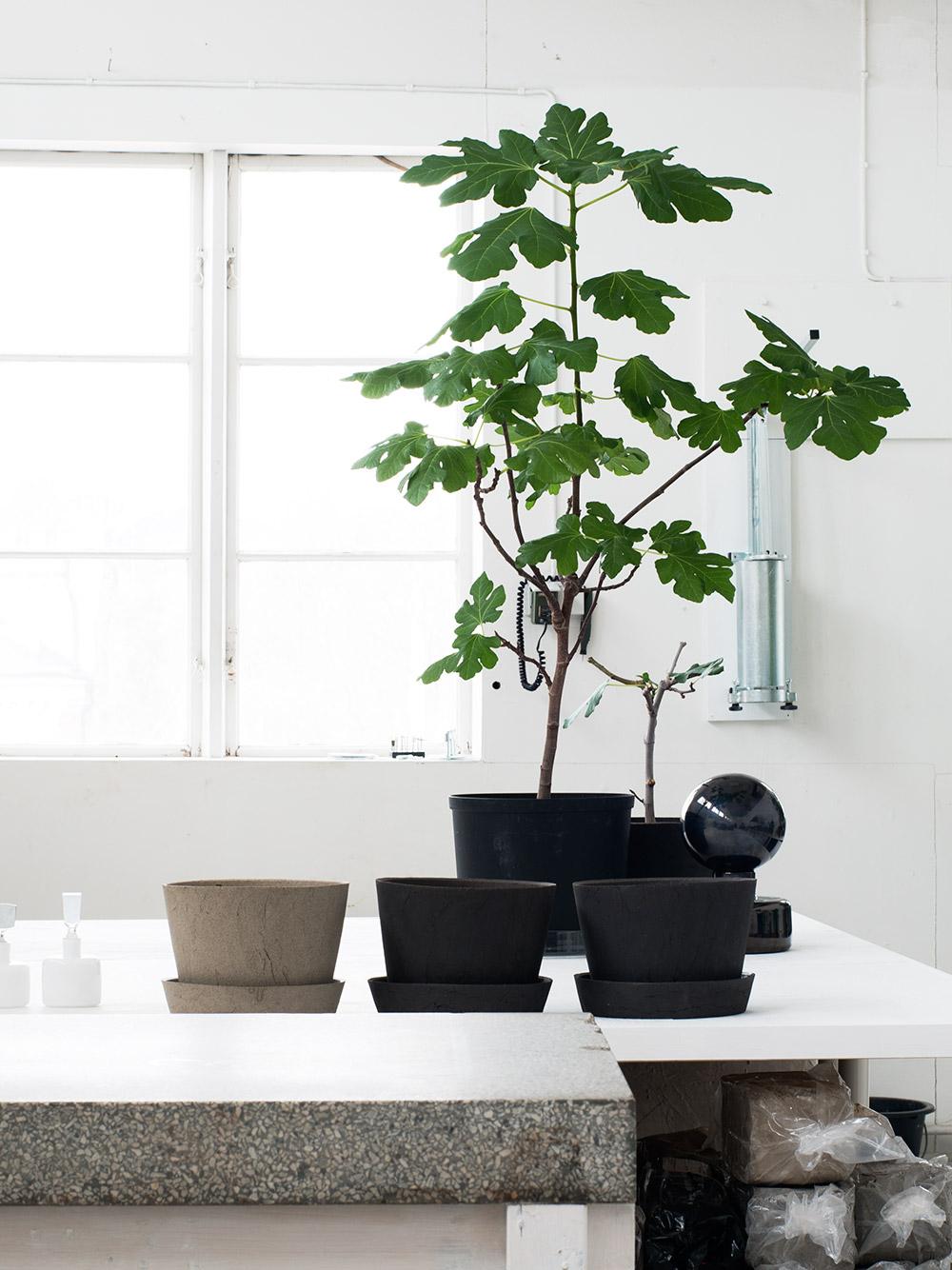 Ceramic Pots — Studio