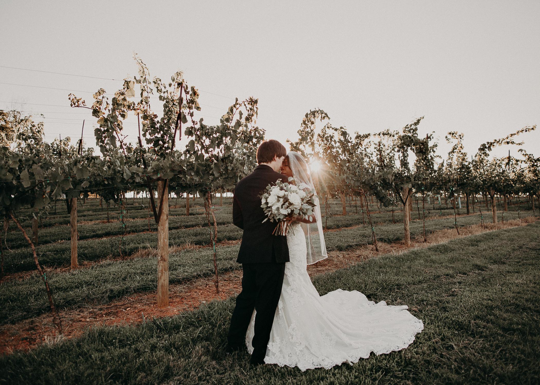 54- Kaya_vineyard_dahlonega_wedding_venue_bride_groom_portraits_aline_marin_photography.jpg